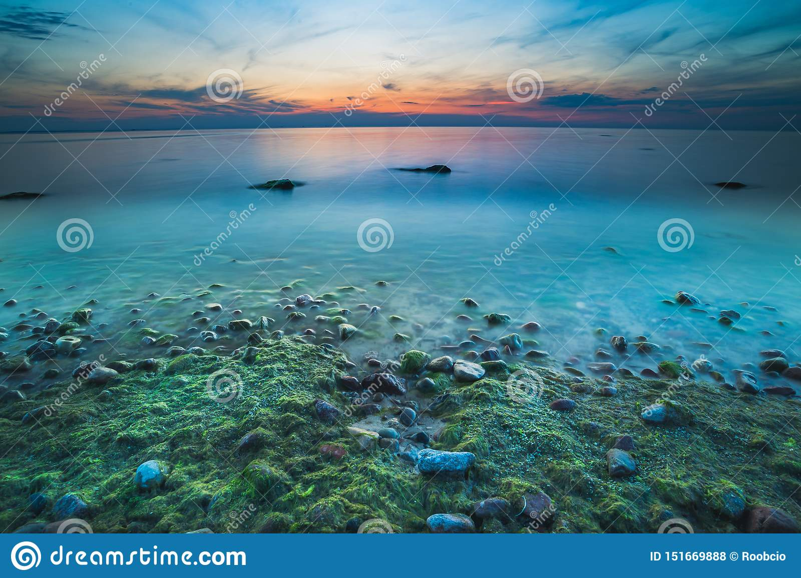 Magnificent seascape at sunset with stones covered seaweeds