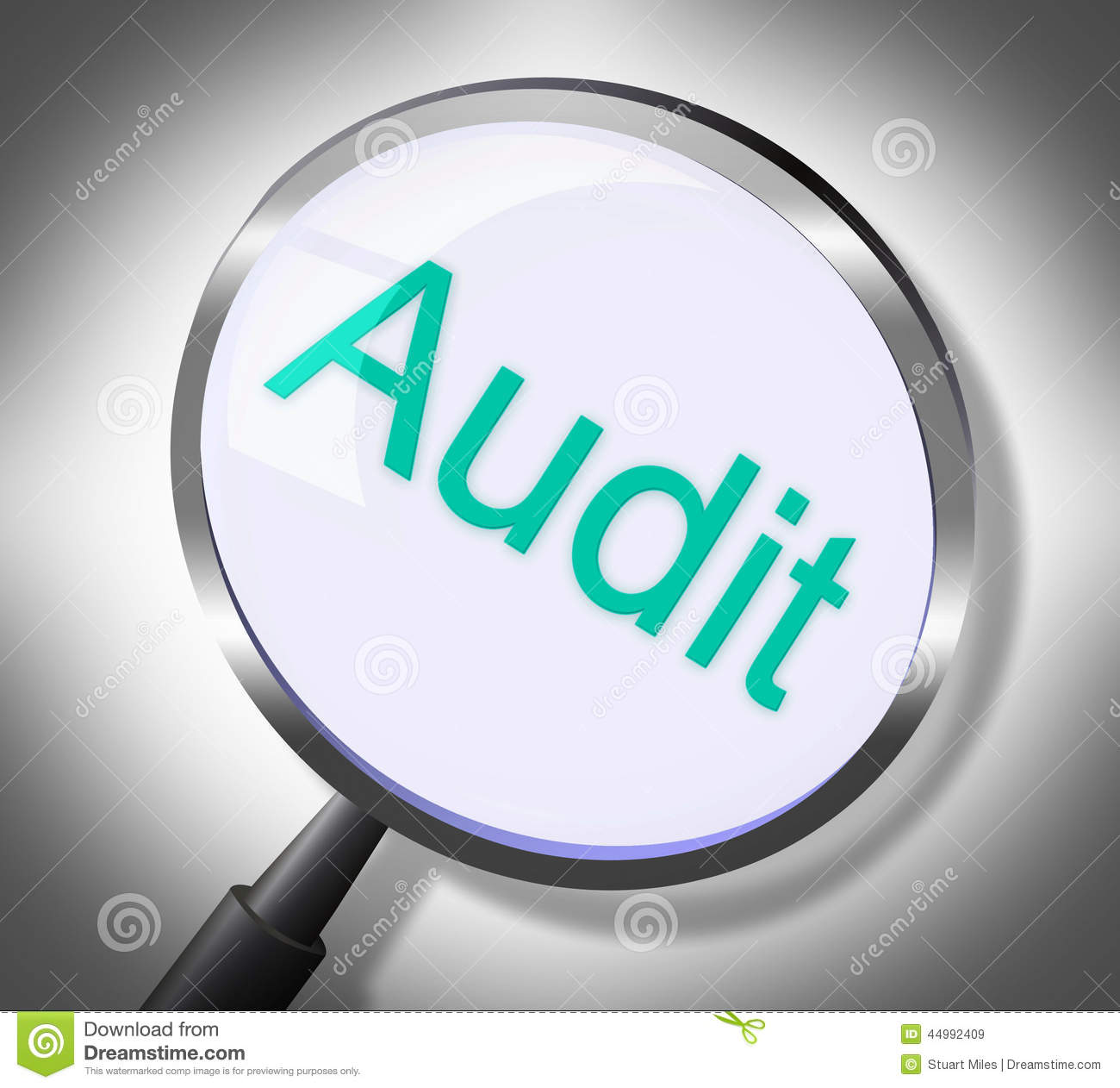 Auditing research