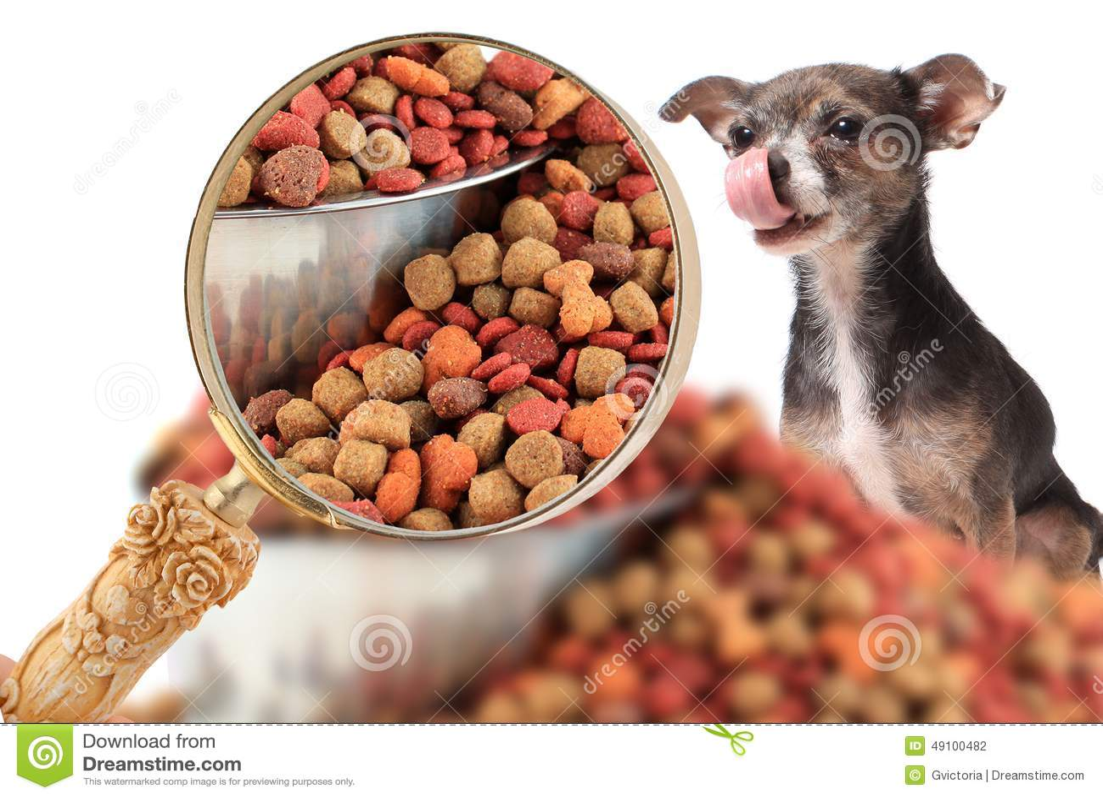 Magnigying in på hundnäring
