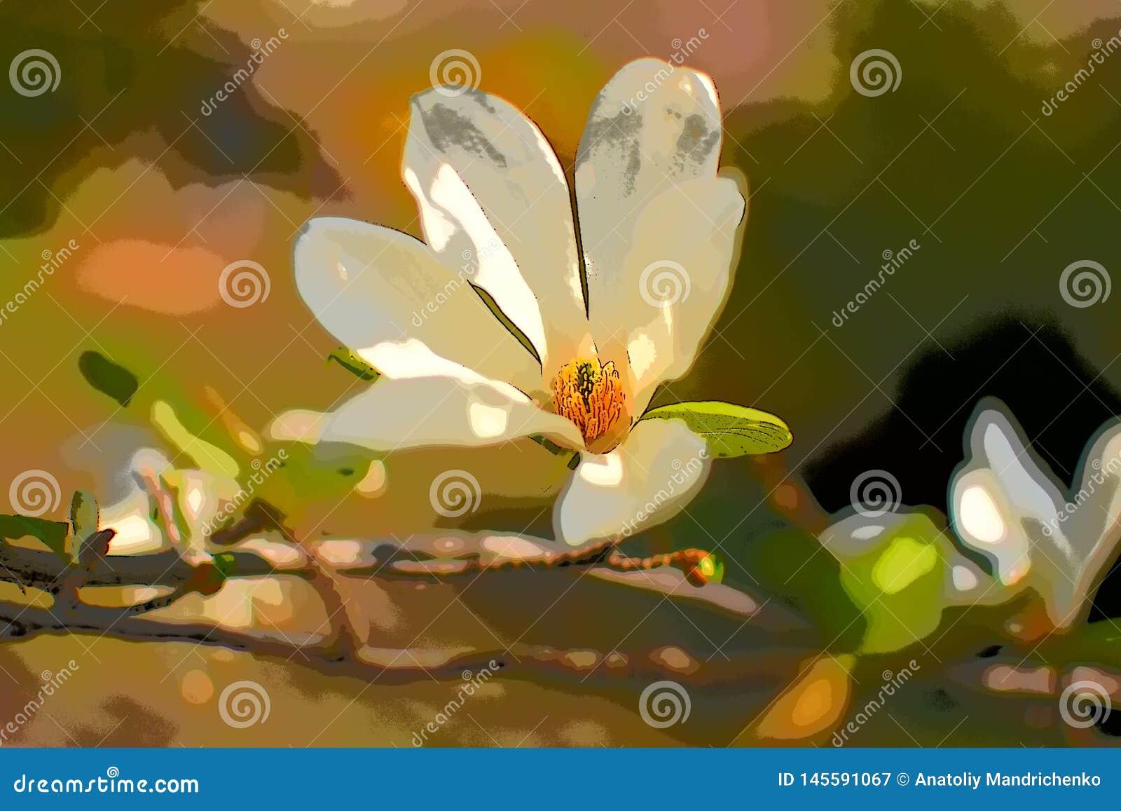Magnolia blanca floreciente