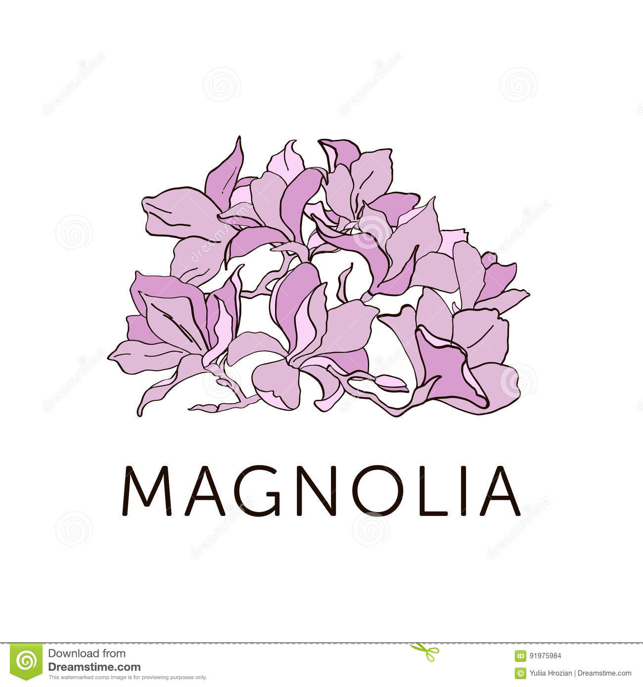Magnolia Flower Outline Sketch Colored In Pink Each Flower Is A