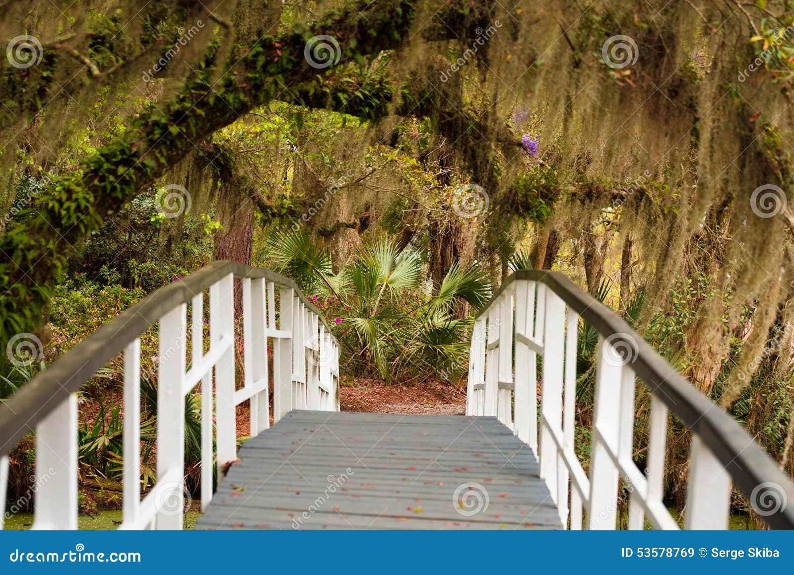 Magnolia Gardens Bridge stock image. Image of lowcountry - 53578769