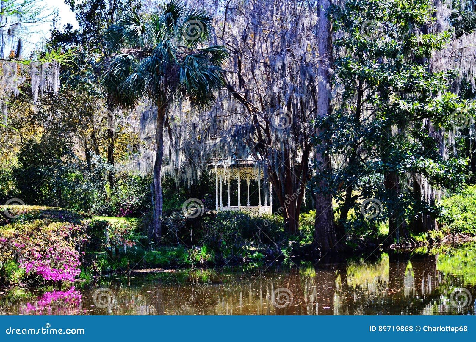 Magnolia Gardens And Plantation In Charleston Sc Stock Photography 89719868