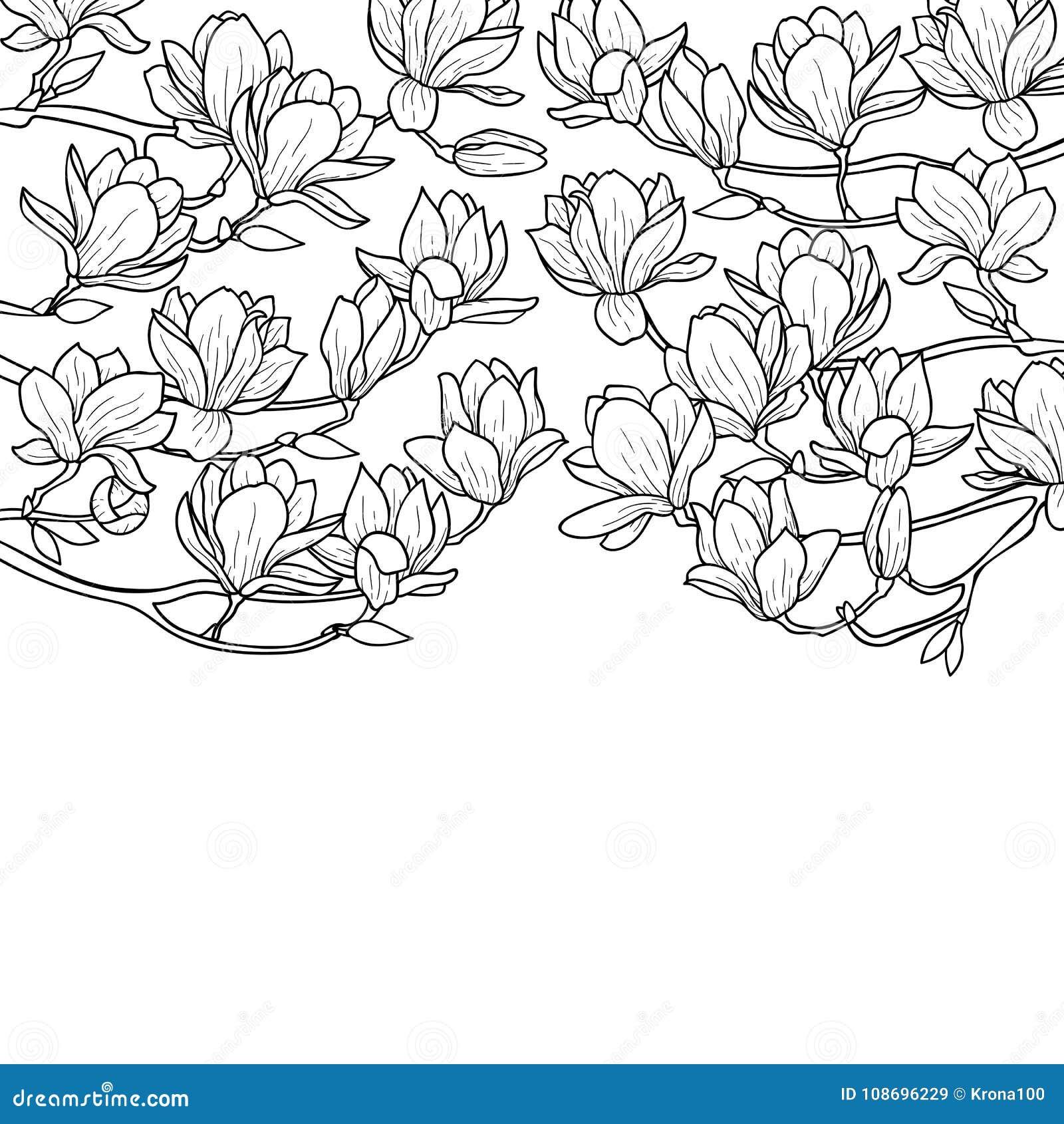 Magnoliowy wiosna skład