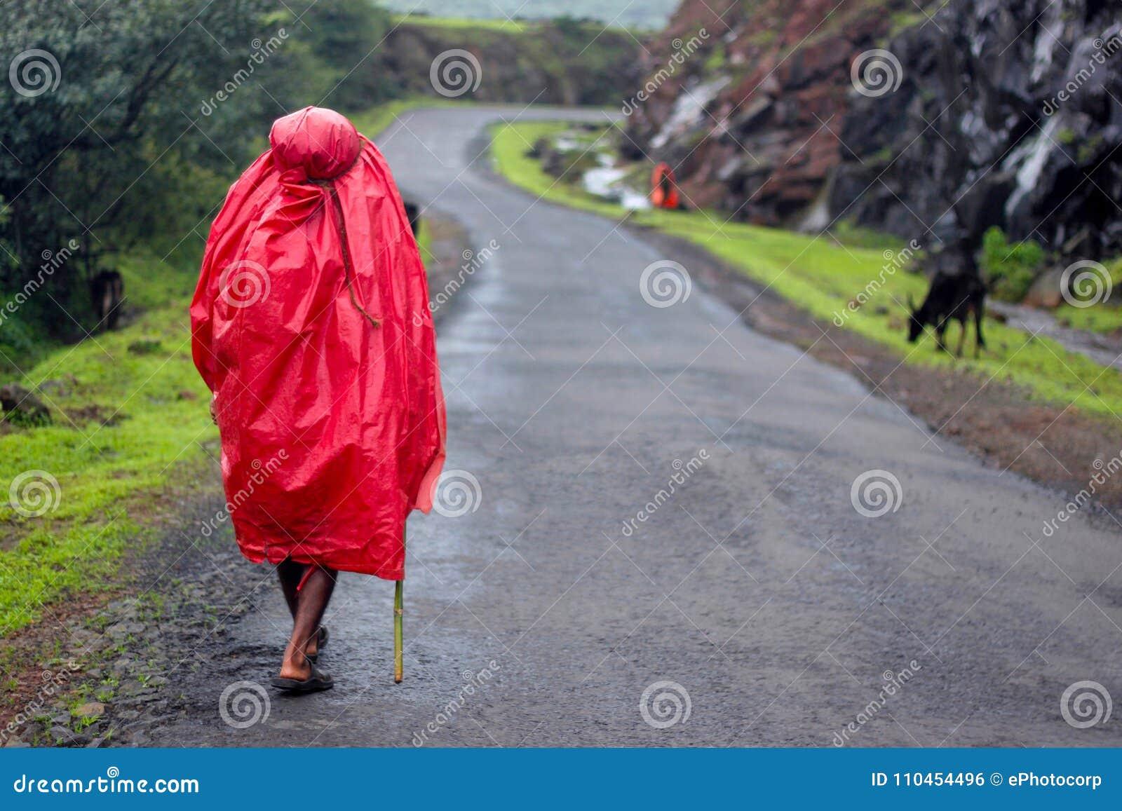Maharashtra Indien, Augusti 2010, herde med den röda regnrocken