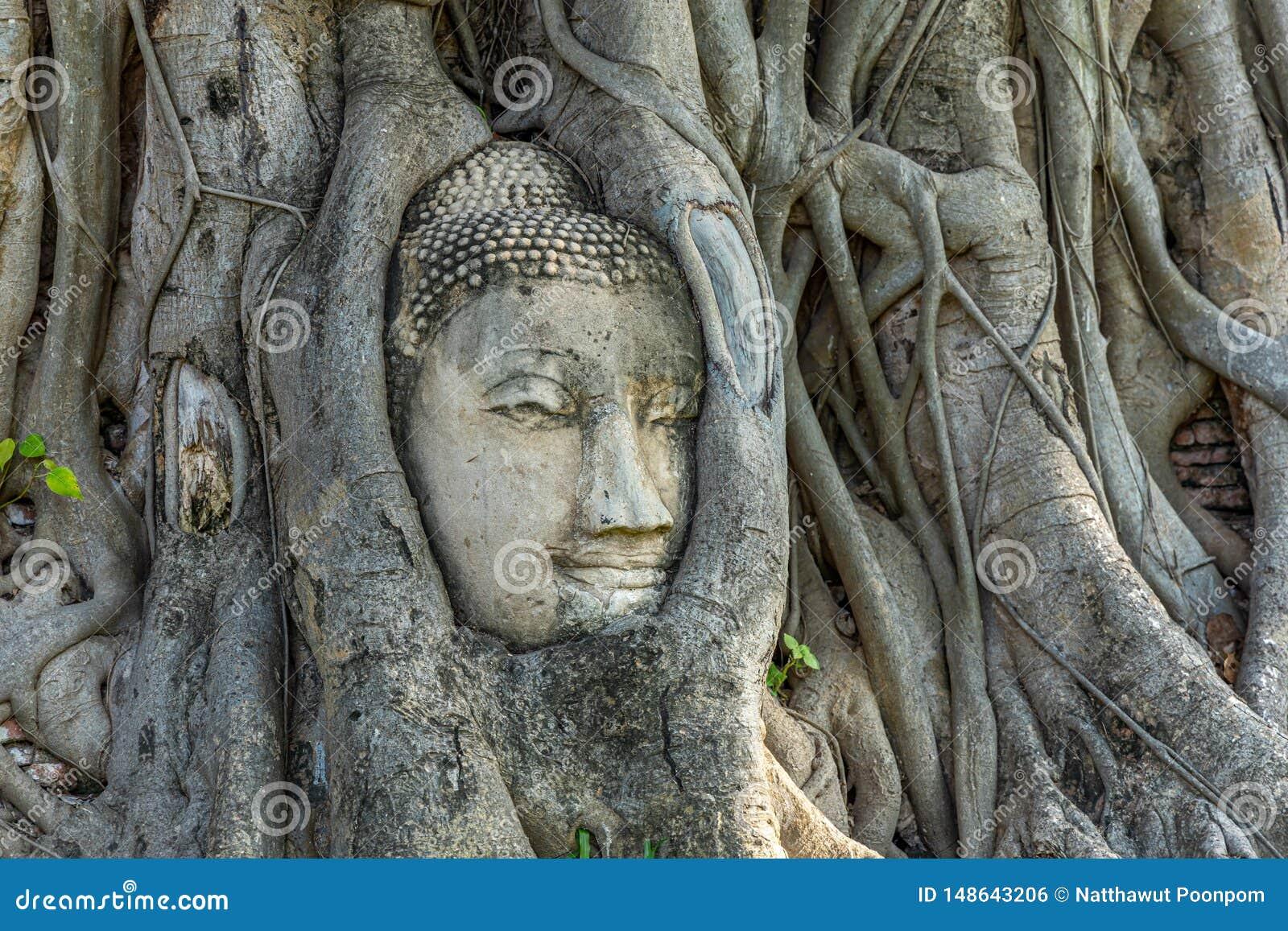 Mahathattempel in het gebied van het Historische Park van Sukhothai