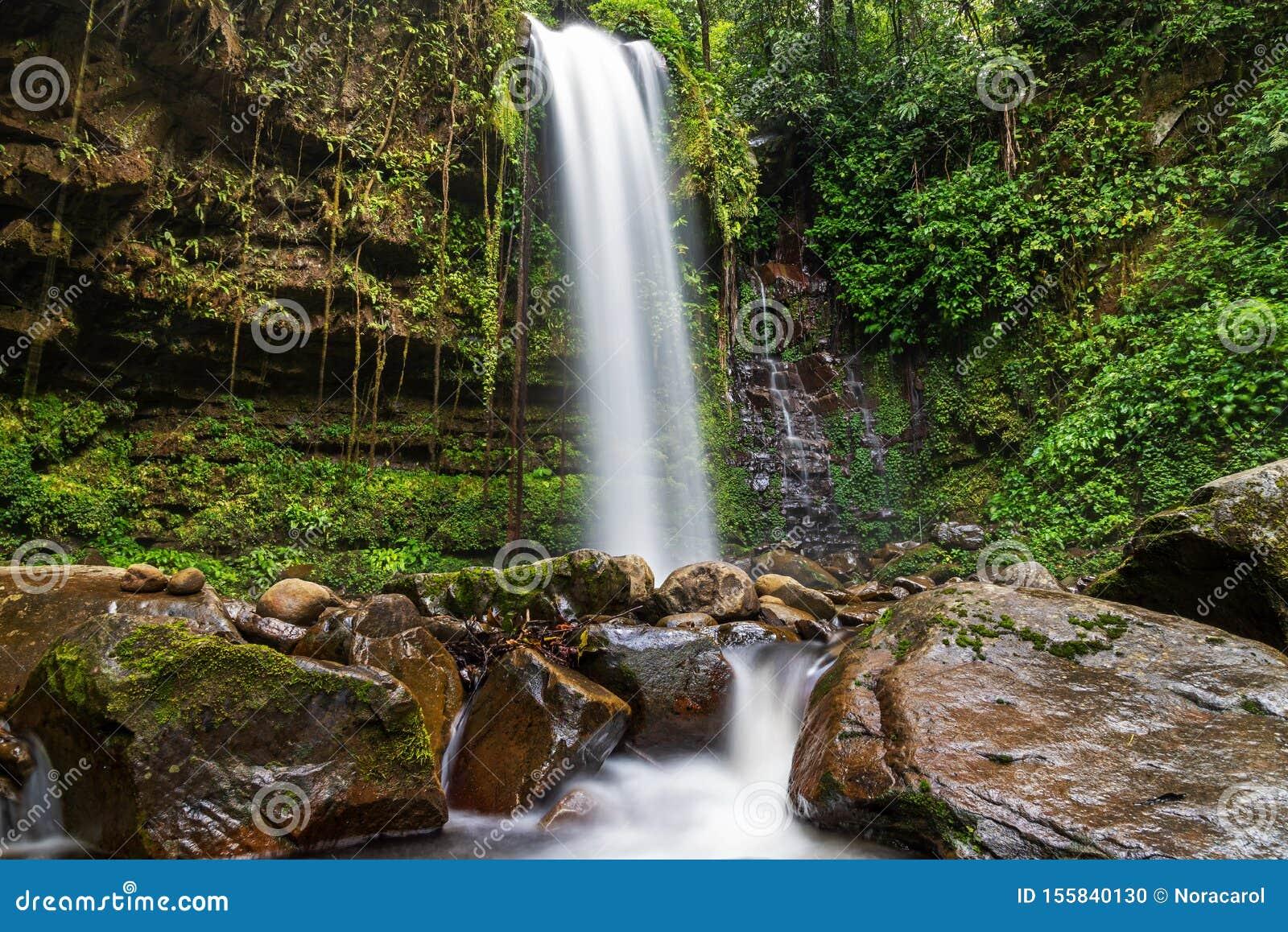 Mahua Waterfall In Crocker Range National Park Tambunan Stock Photo Image Of Landscape Creek 155840130