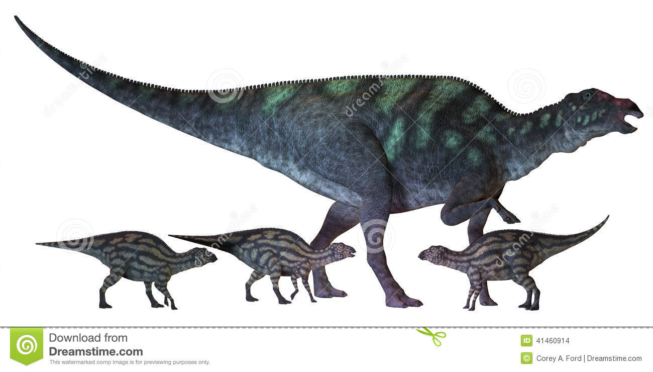 Maiasaura is a large duck-billed dinosaur that lived in North America ...