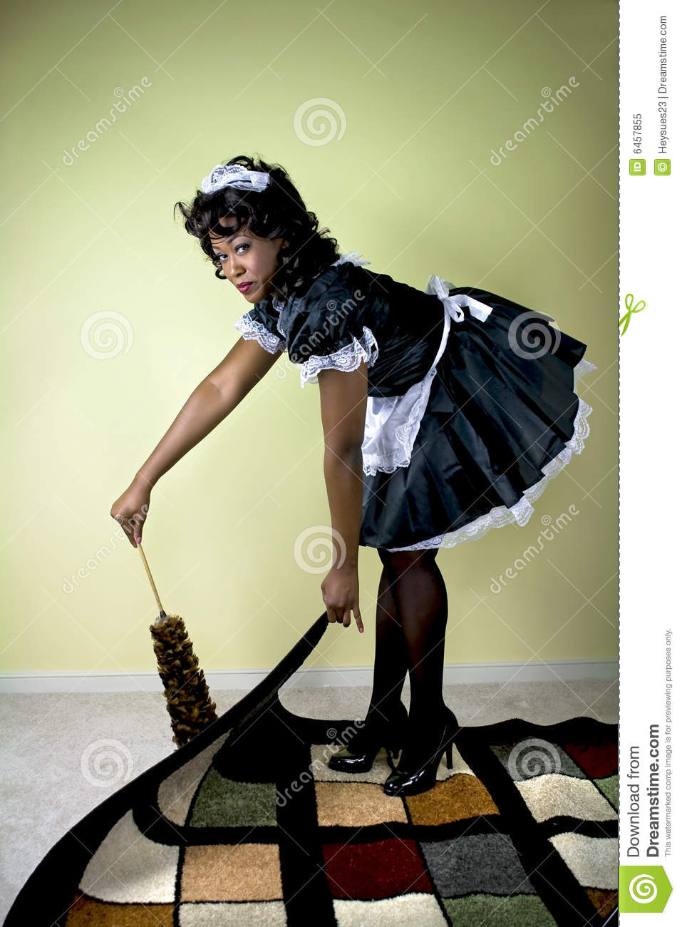 Maid Cleaning Royalty Free Stock Photo Image 6457855