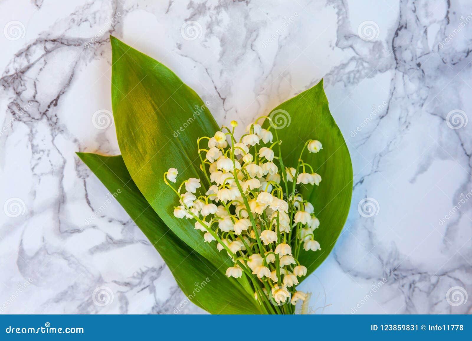 Maiglöckchen oder Könnenlilie auf Marmorhintergrund