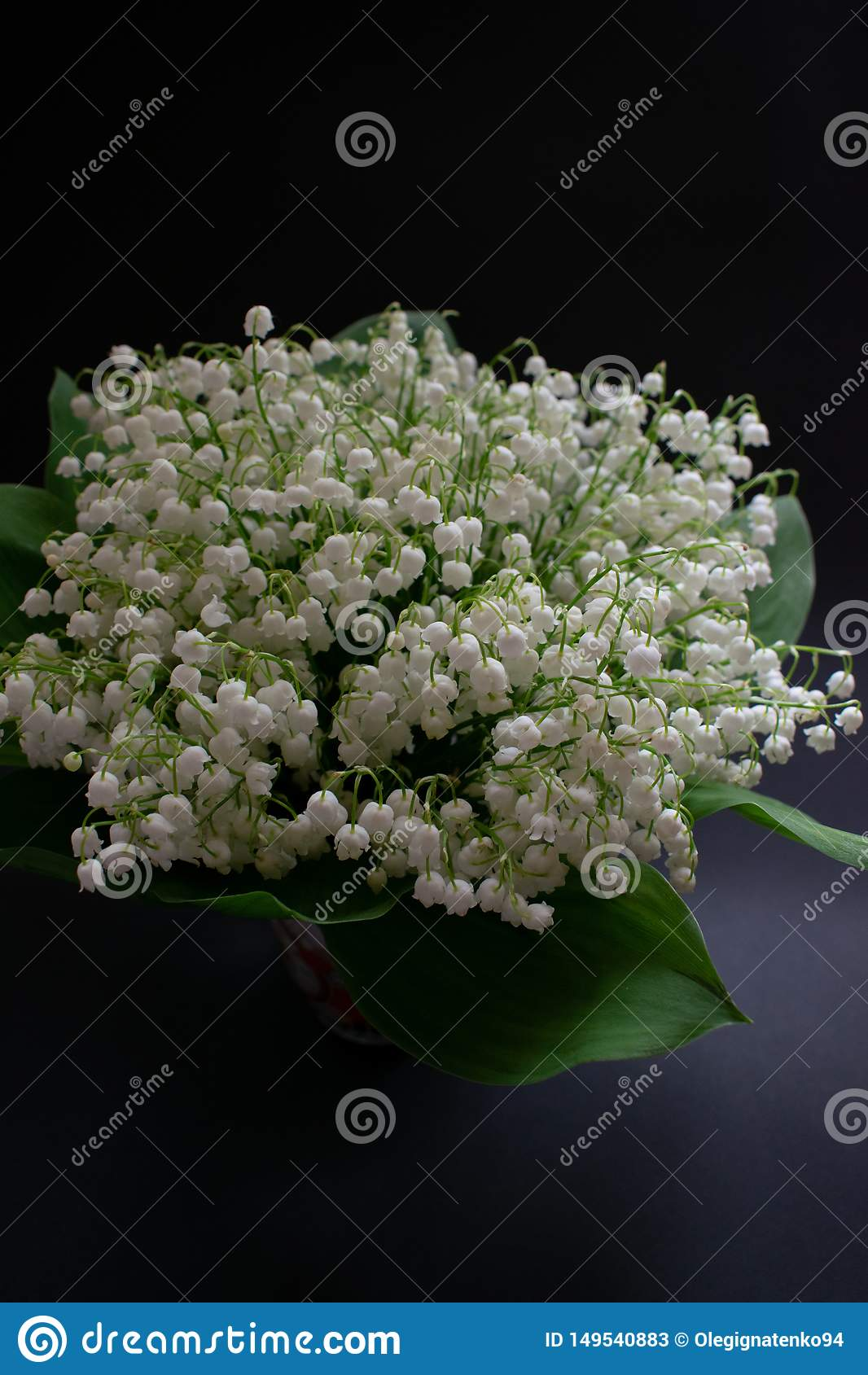 Maigl?ckchenblumen auf einem schwarzen Hintergrund 1