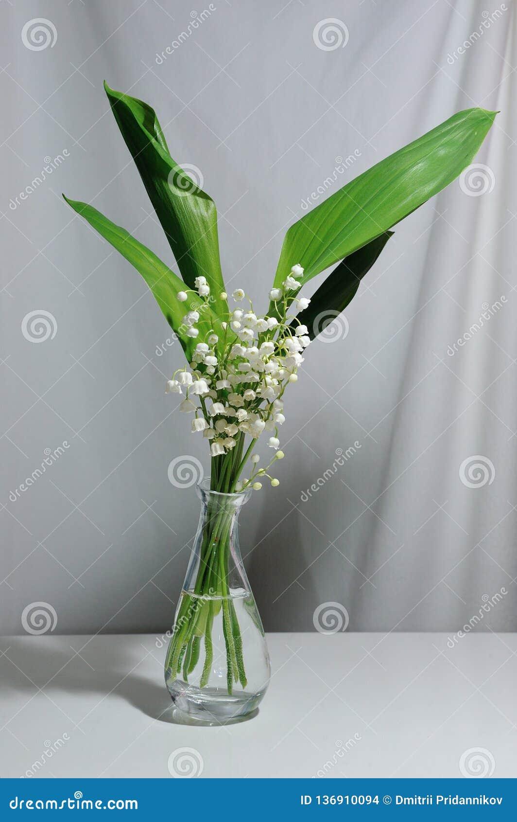 Maiglöckchenblumen in einem transparenten Vase