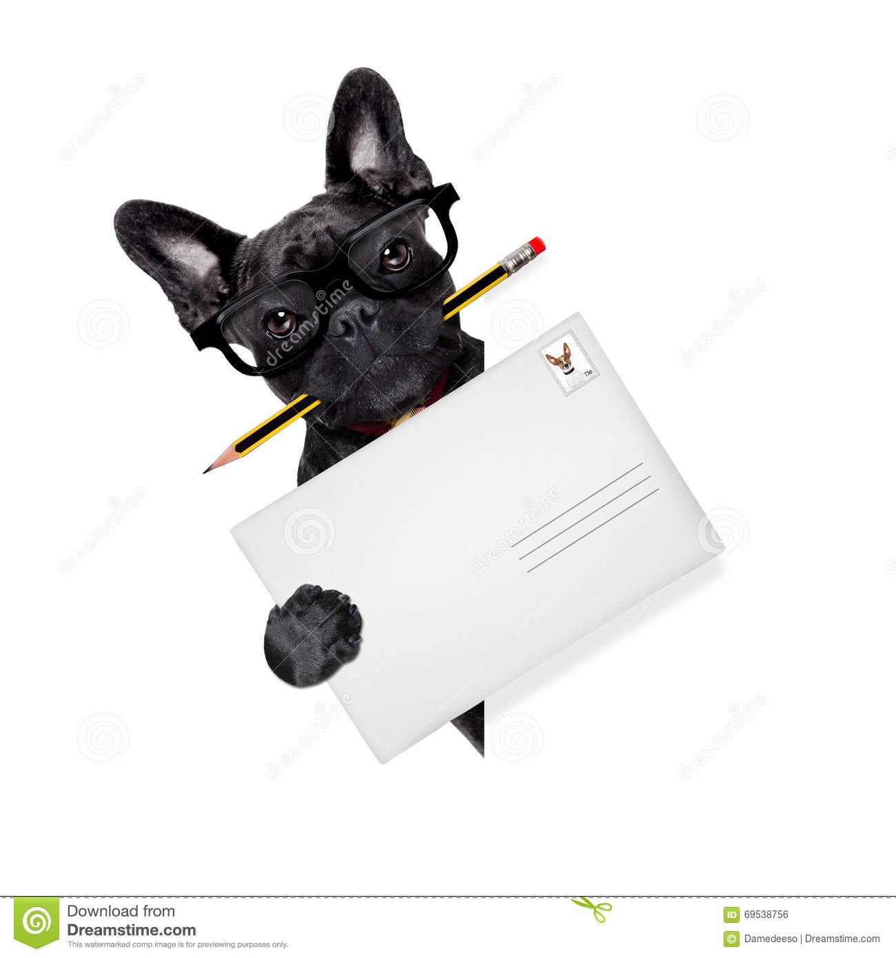 Mail Delivery Post Dog Stock Photo Image 69538756