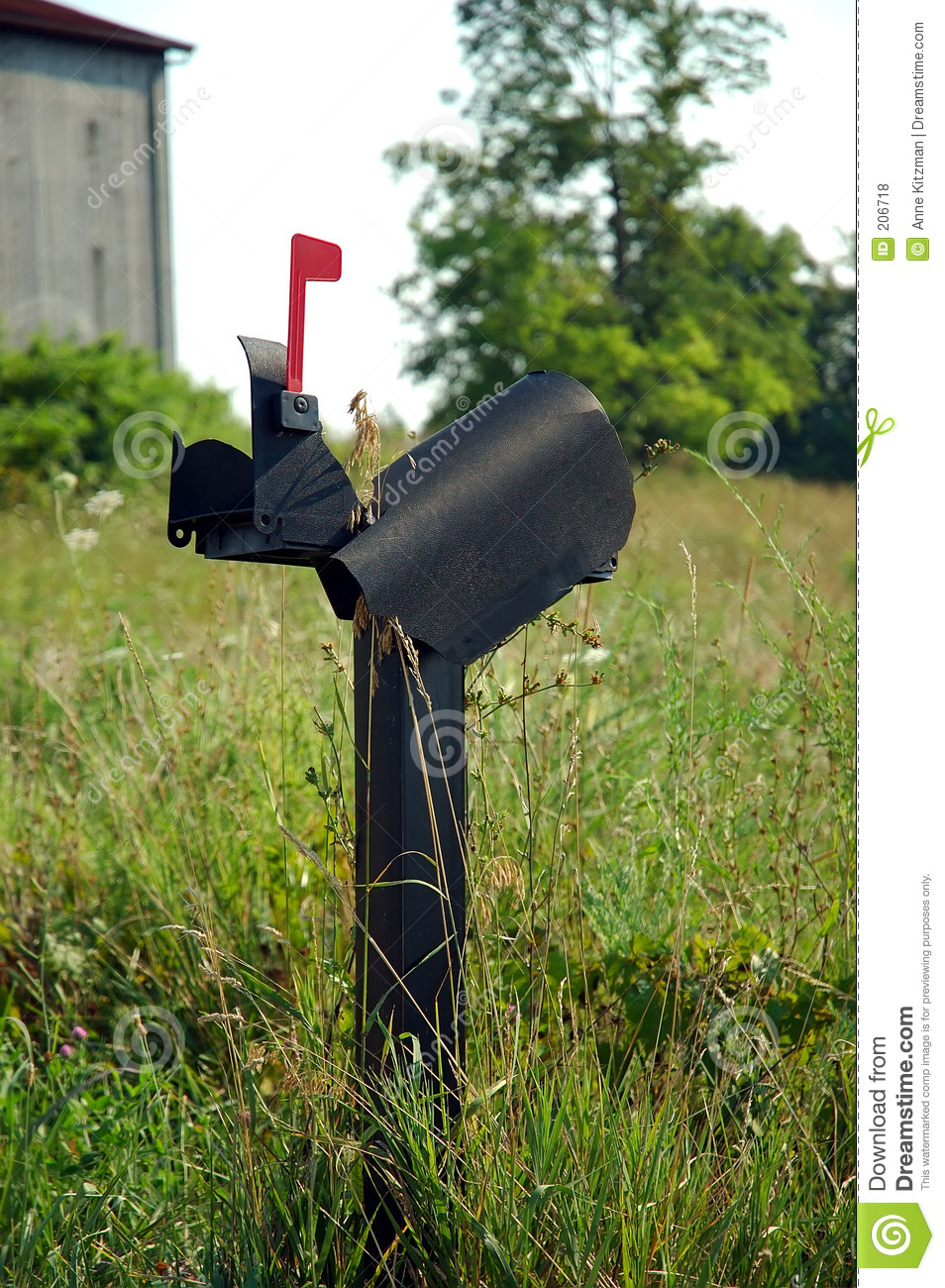 broken mailbox, with the red flag raised, sitting in an overgrown ...