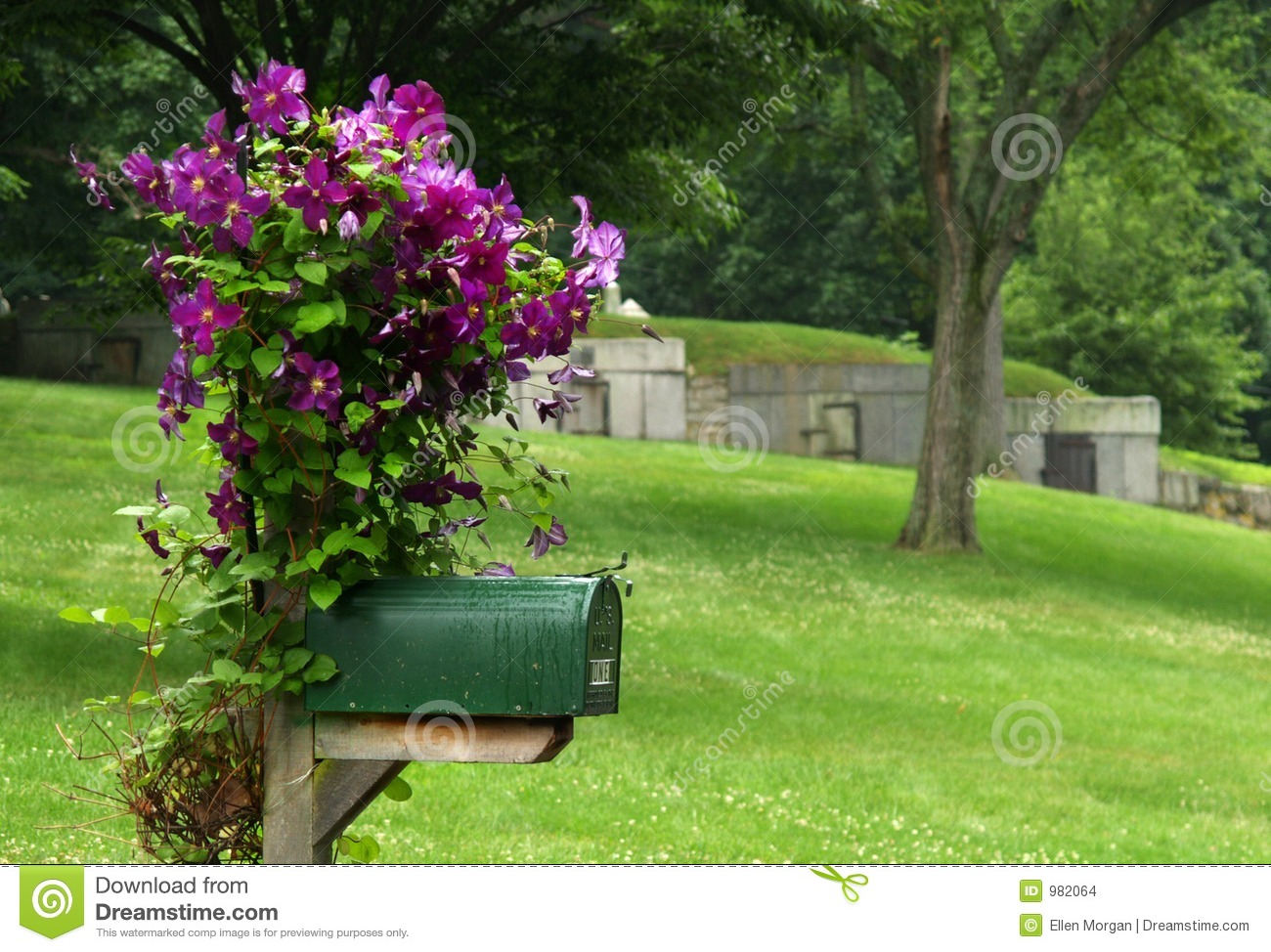 mailbox with purple flowers stock photo image of tomb. Black Bedroom Furniture Sets. Home Design Ideas