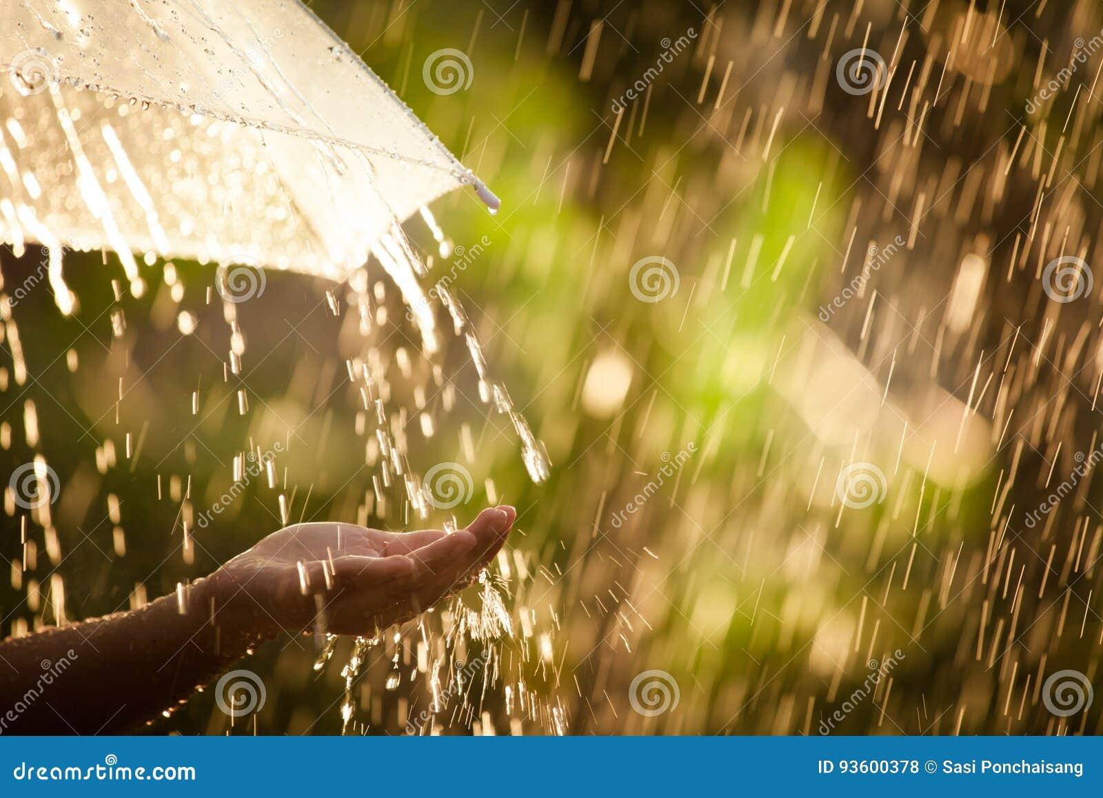 Main de femme avec le parapluie sous la pluie