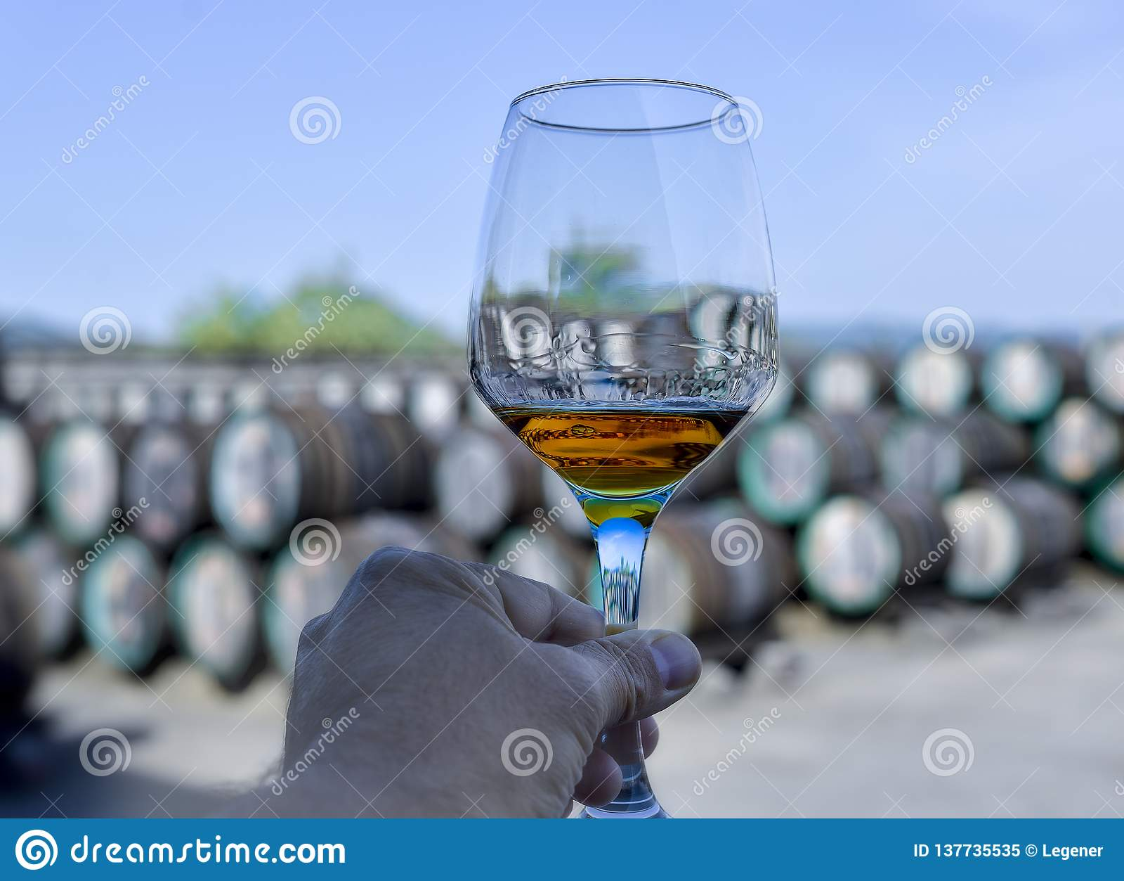Main de Sommelier tenant un verre avec du vin à l intérieur