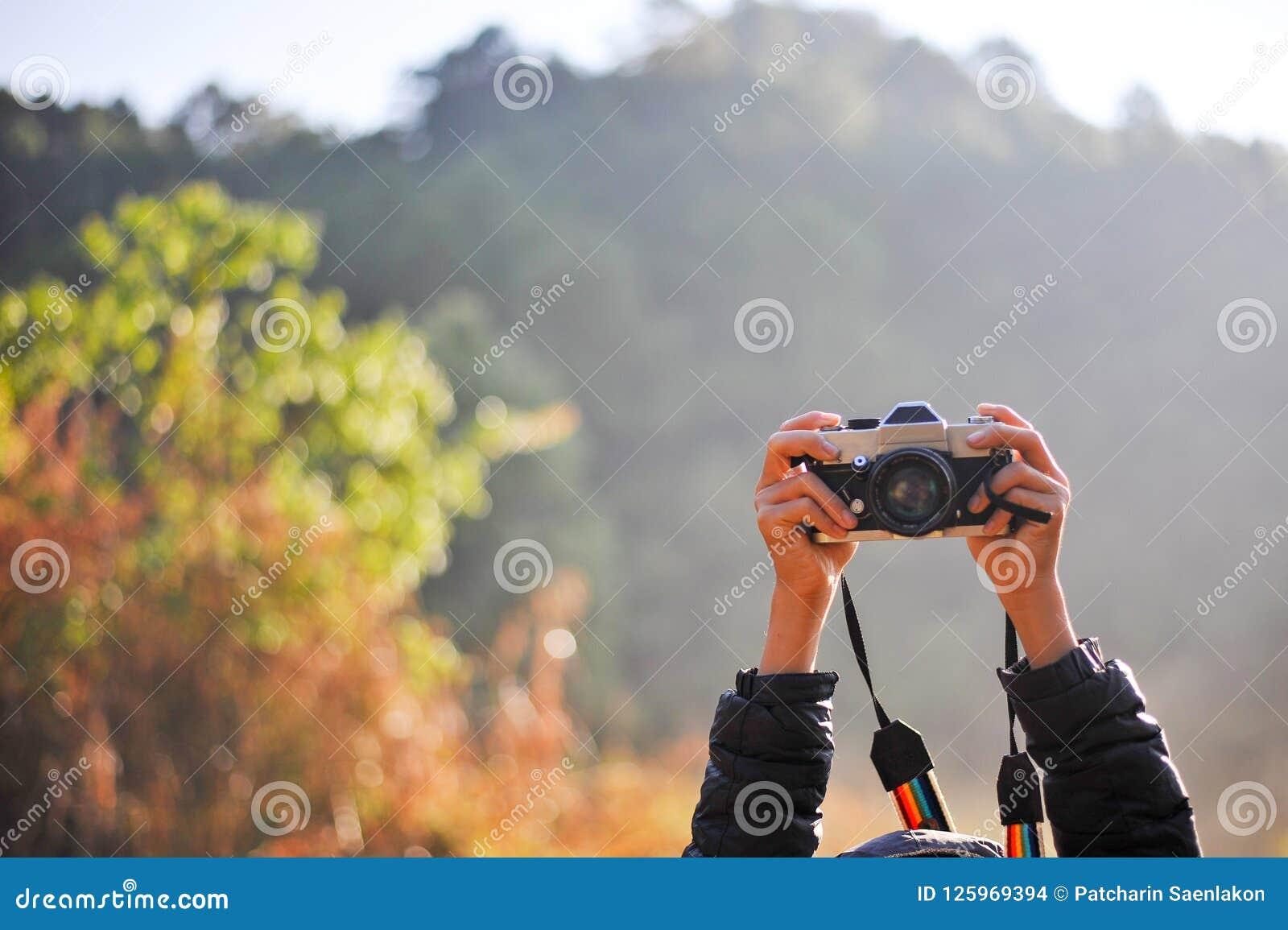 Main Et Appareil Photo Du Photographe Dans La Forêt Son
