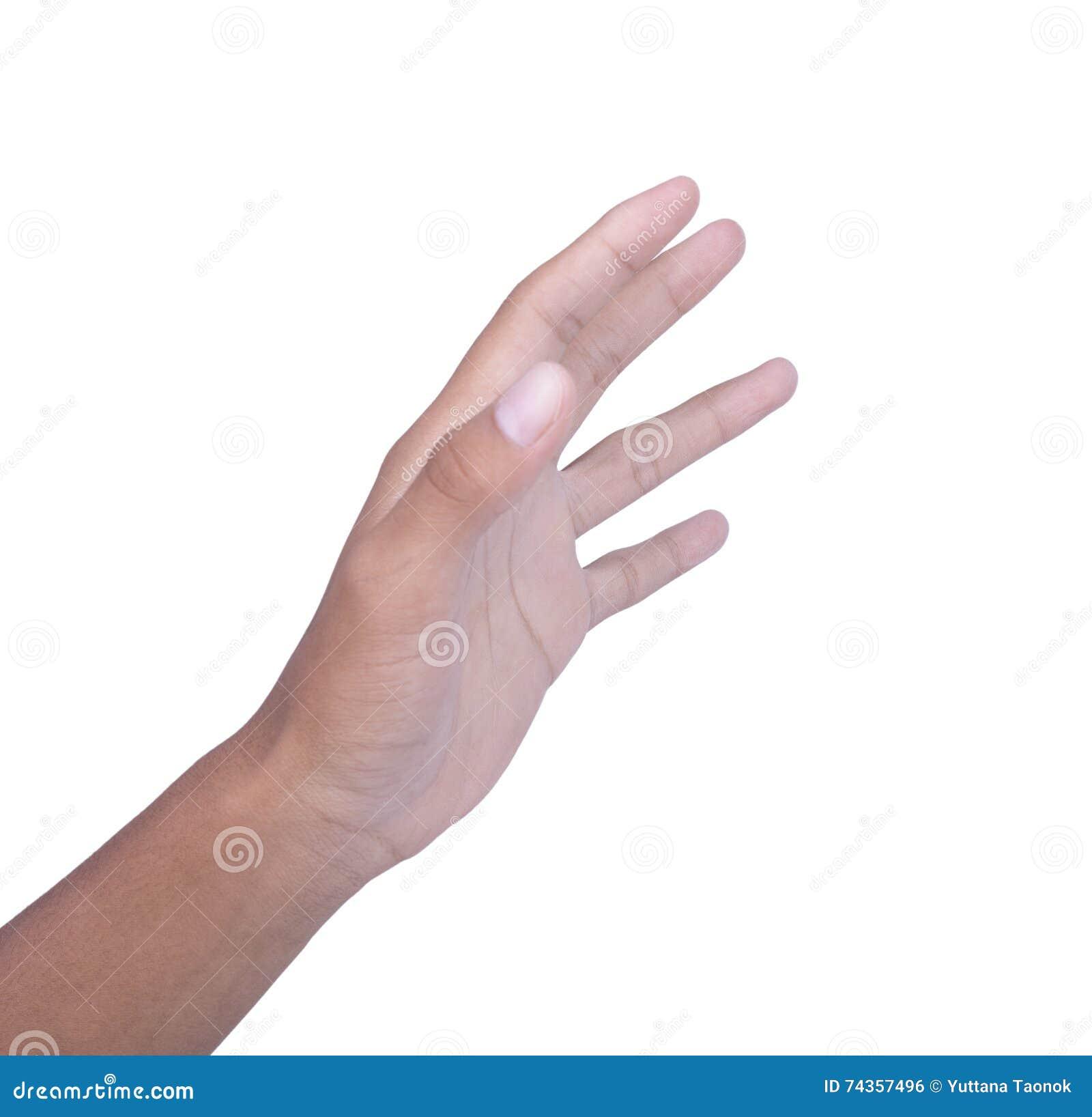 Main gauche sur le fond blanc