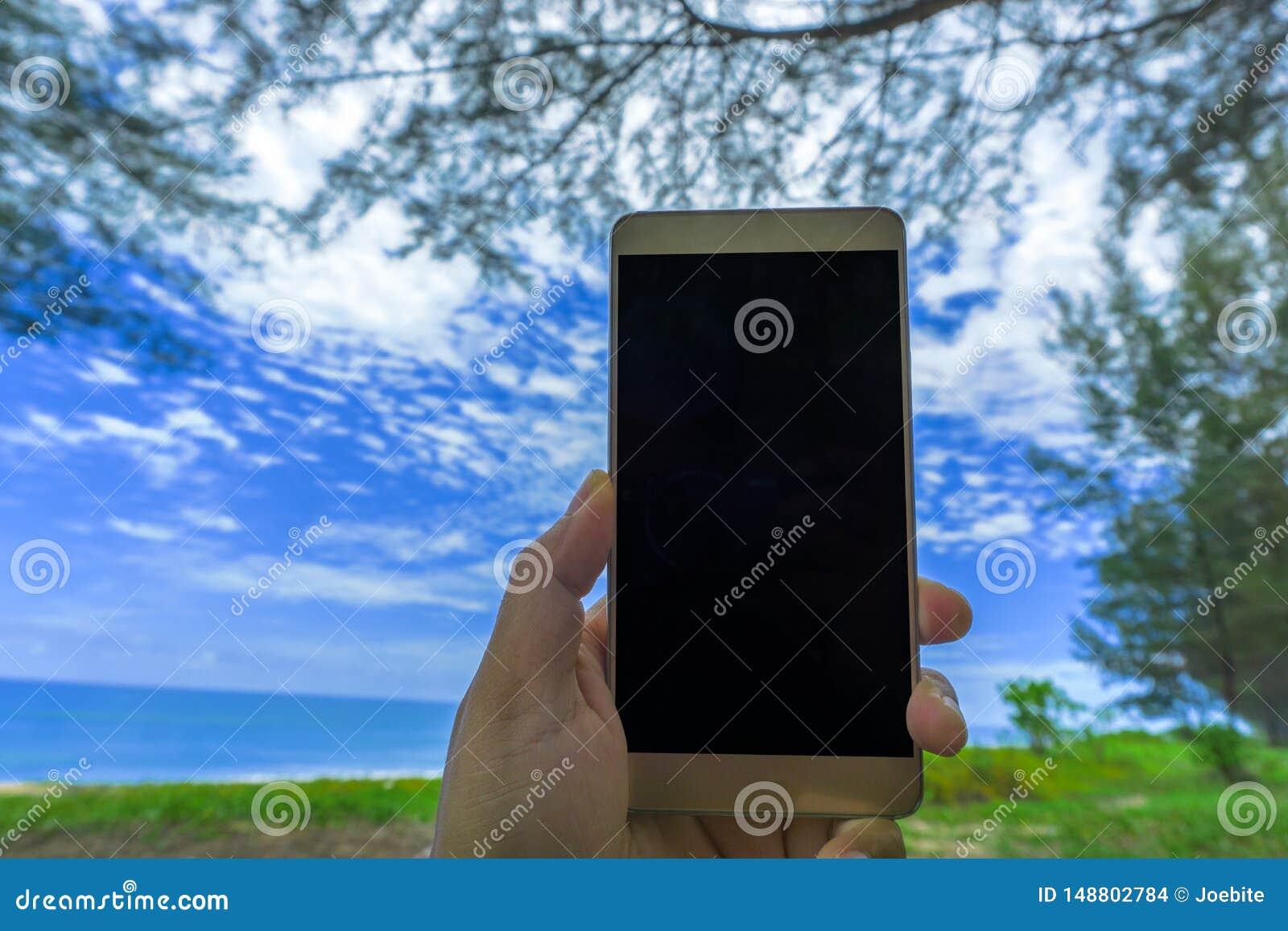 Main haute étroite de jeune femme tenant une moquerie noire moderne de smartphone dans la position horizontale avec l écran vide