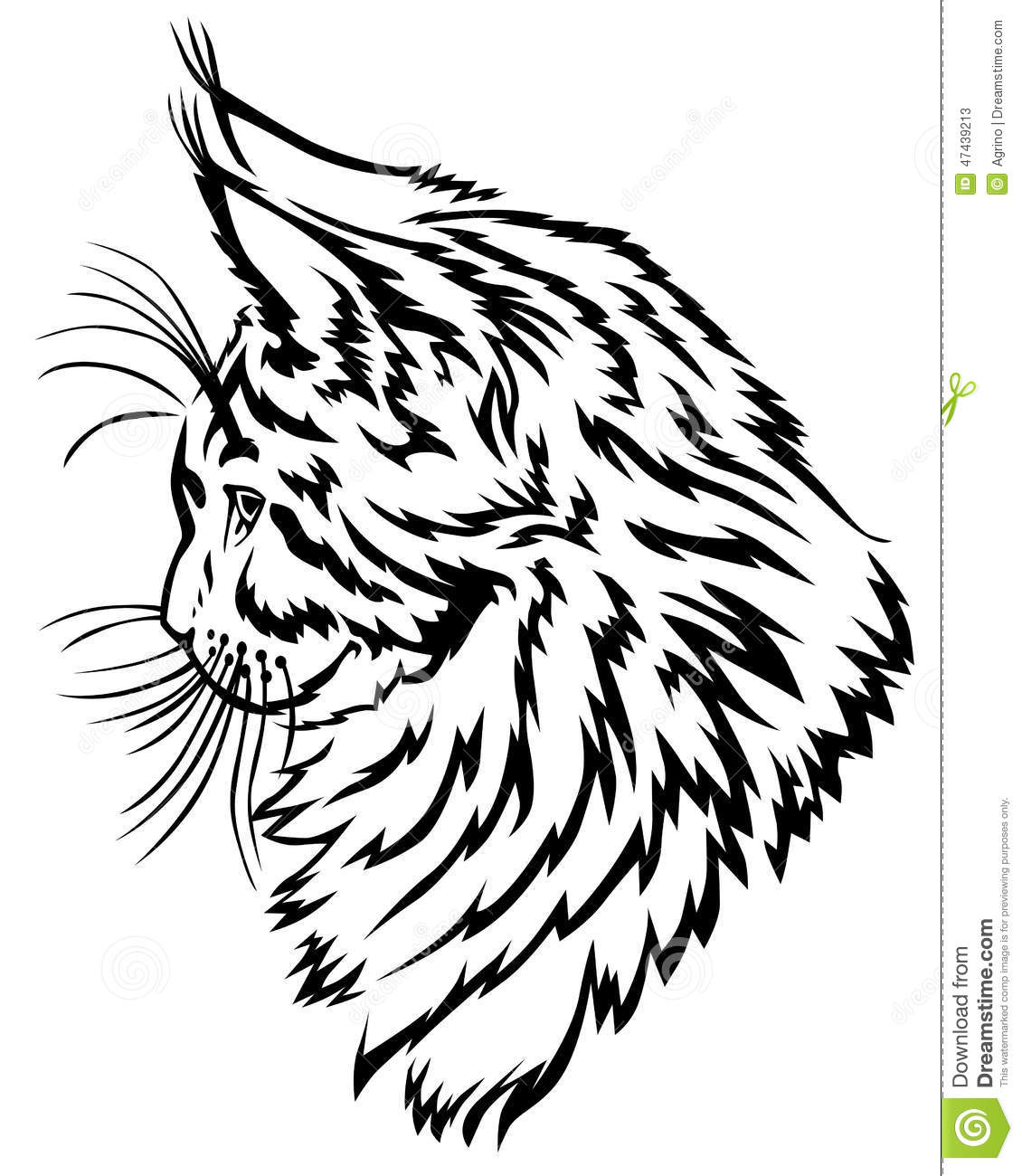 Contour Line Drawing Of A Cat : Maine coon kitten profile stock vector image