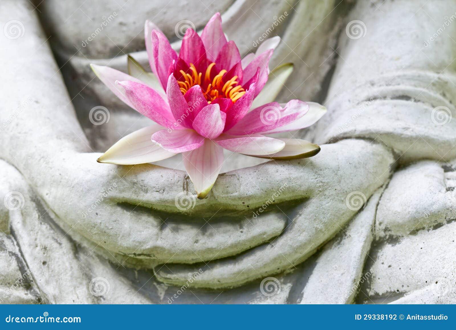 Mains de Bouddha retenant la fleur