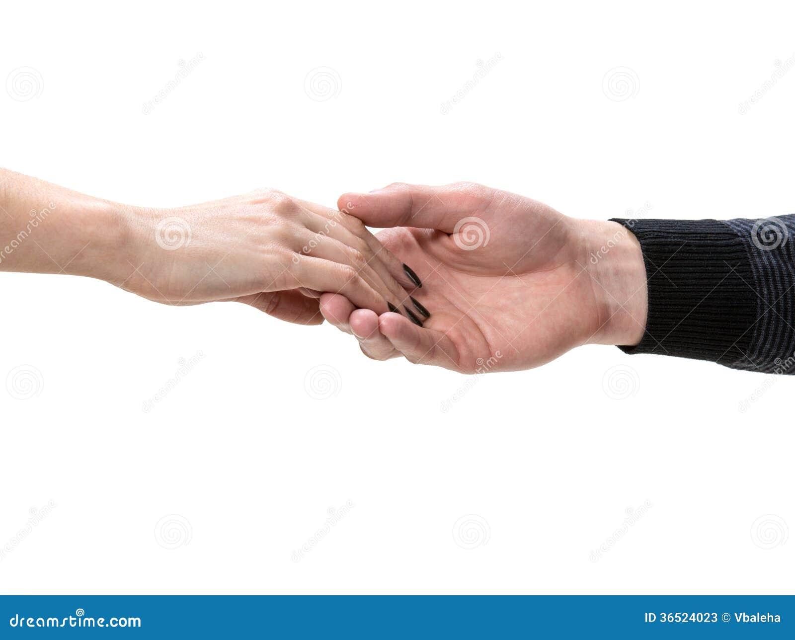 Mains femelles et masculines