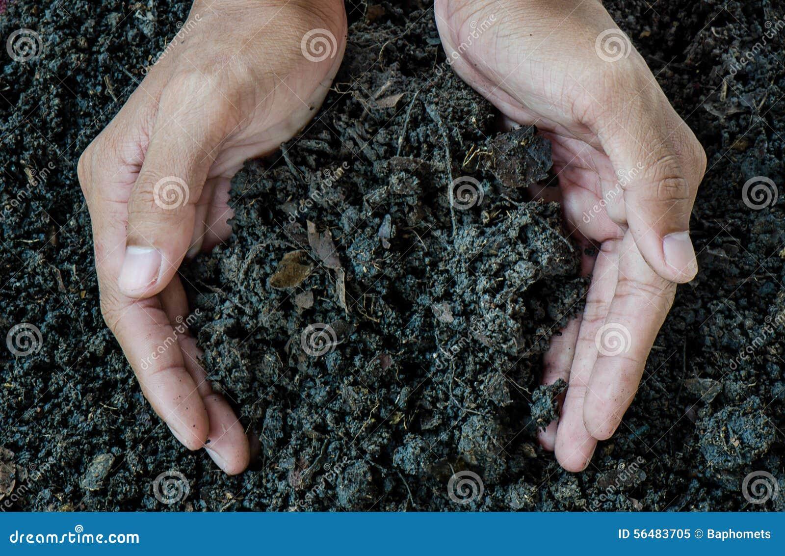 Mains tenant le sol, engrais organique