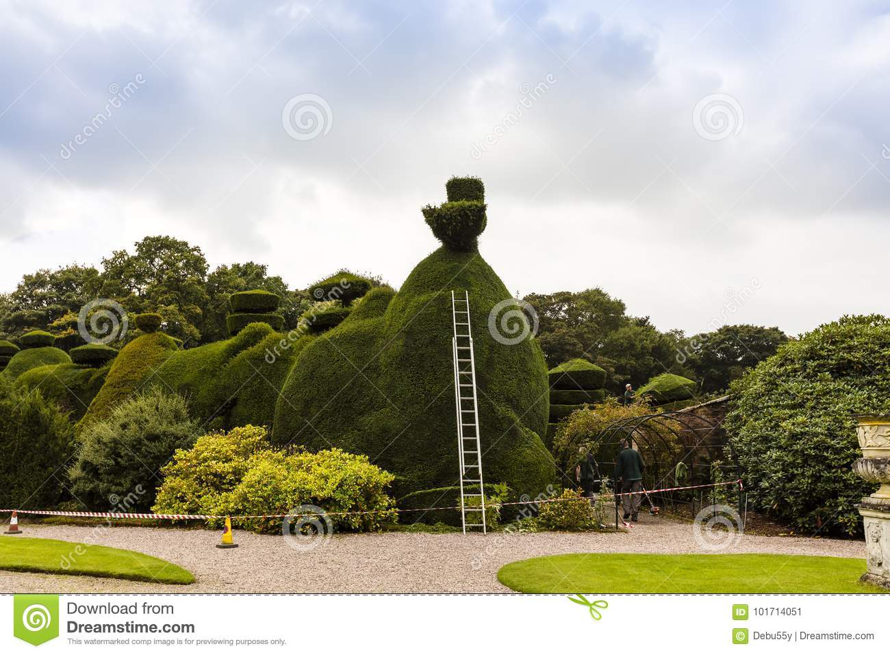 Topiary Care Stock Image Image Of Progress High Natural