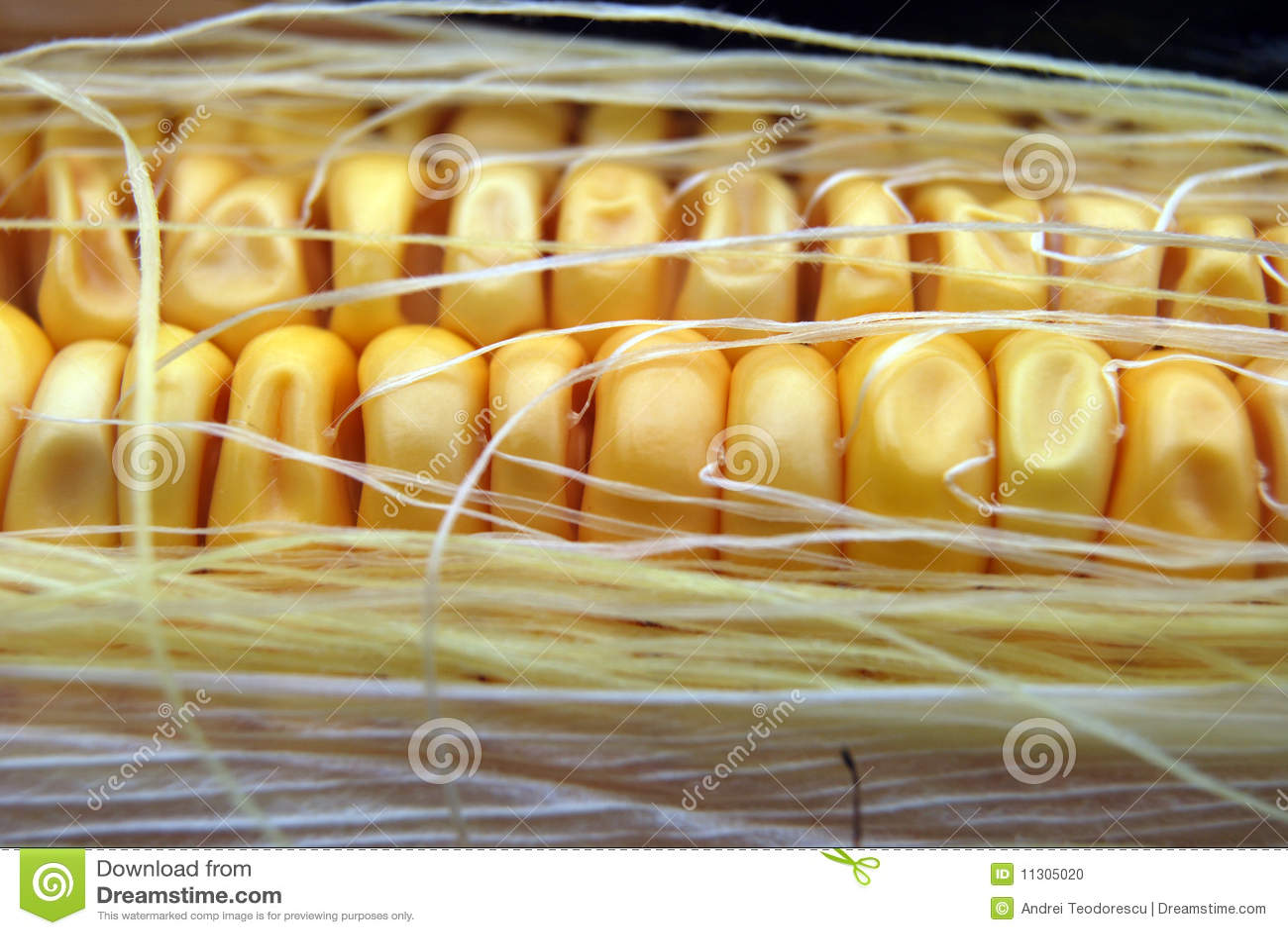 Maisnahaufnahme