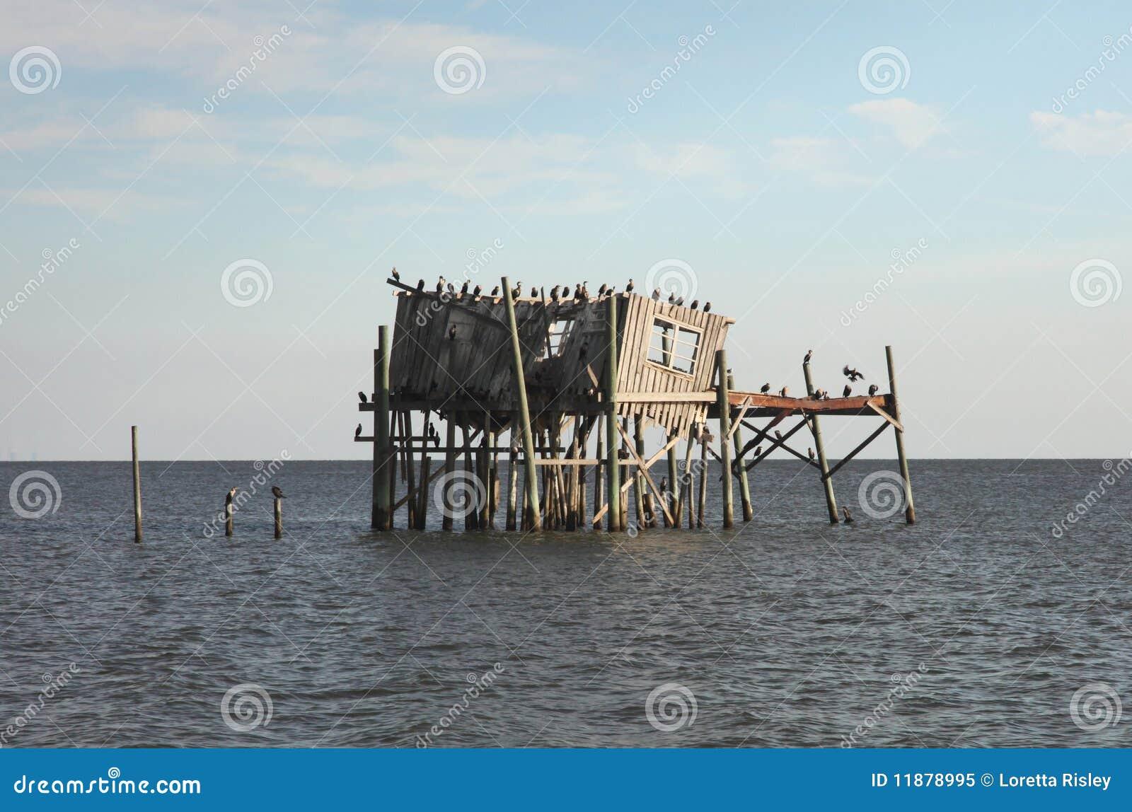 Maison abandonnée d échasse dans la clé de cèdre, la Floride
