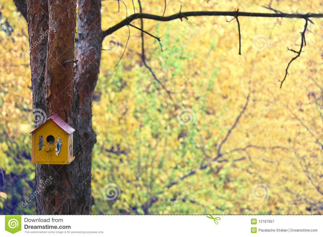 maison d 39 oiseau sur l 39 arbre en automne image stock image du lames for t 12187667. Black Bedroom Furniture Sets. Home Design Ideas