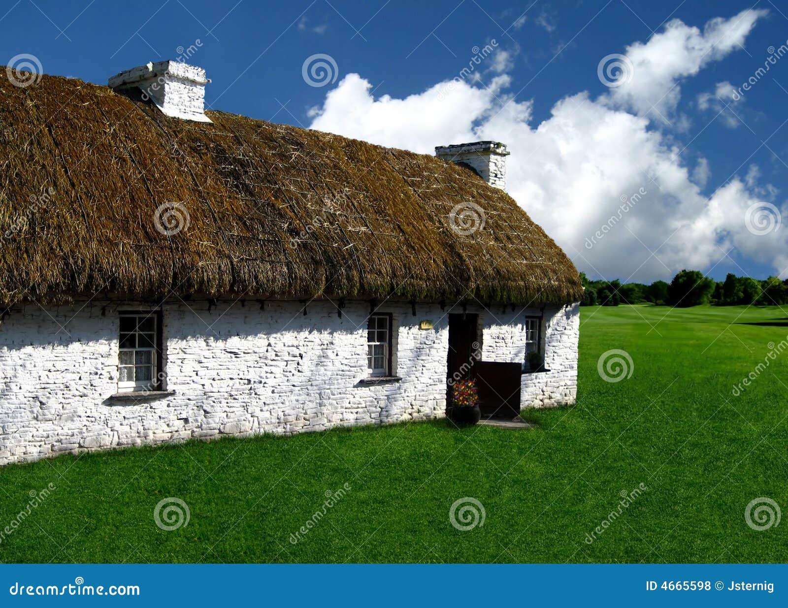 maison de toit couvert de chaume dans le domaine herbeux. Black Bedroom Furniture Sets. Home Design Ideas