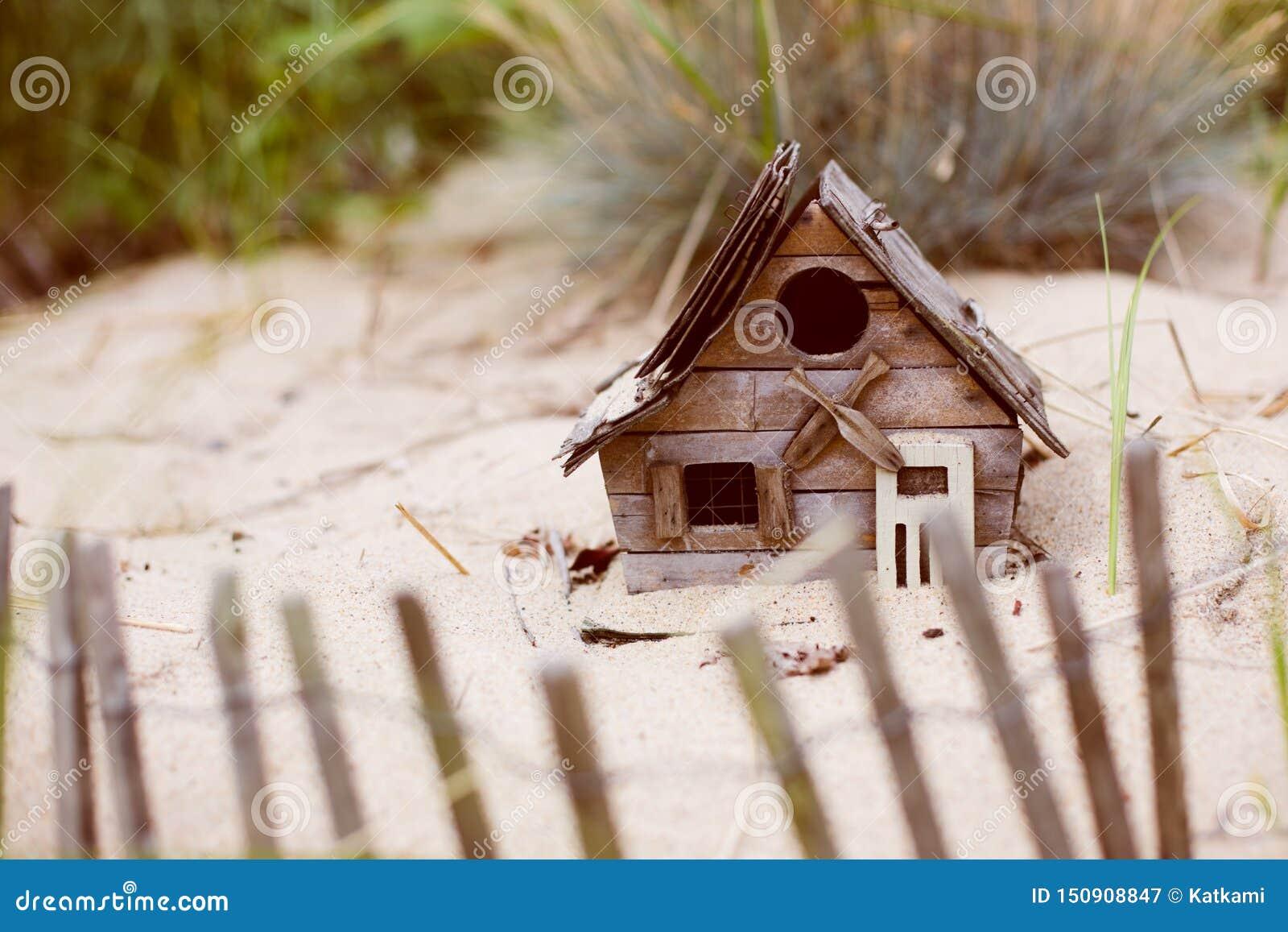 Maison du front de mer minuscule d oiseau dans le sable