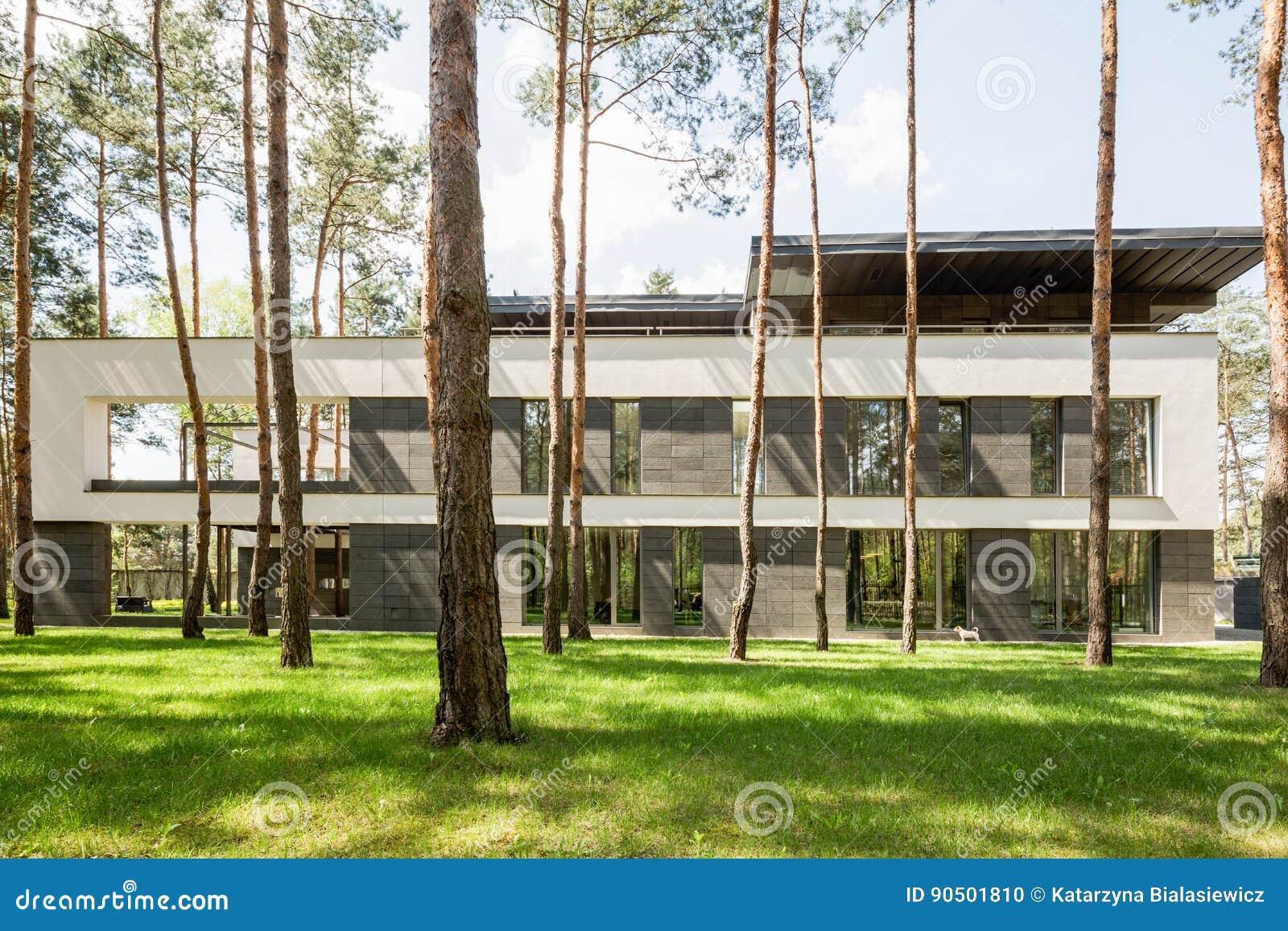 Maison Moderne Extérieure Dans La Forêt Photo stock - Image ...