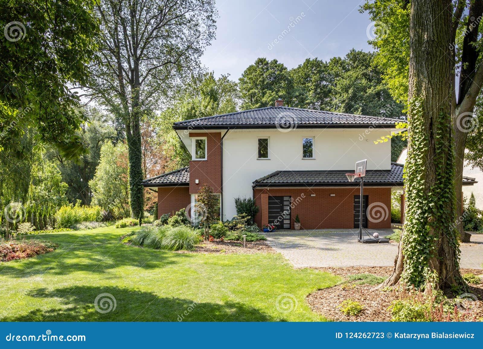 Maison Moderne, Jardin Avec Des Buissons Et Arbres Image ...