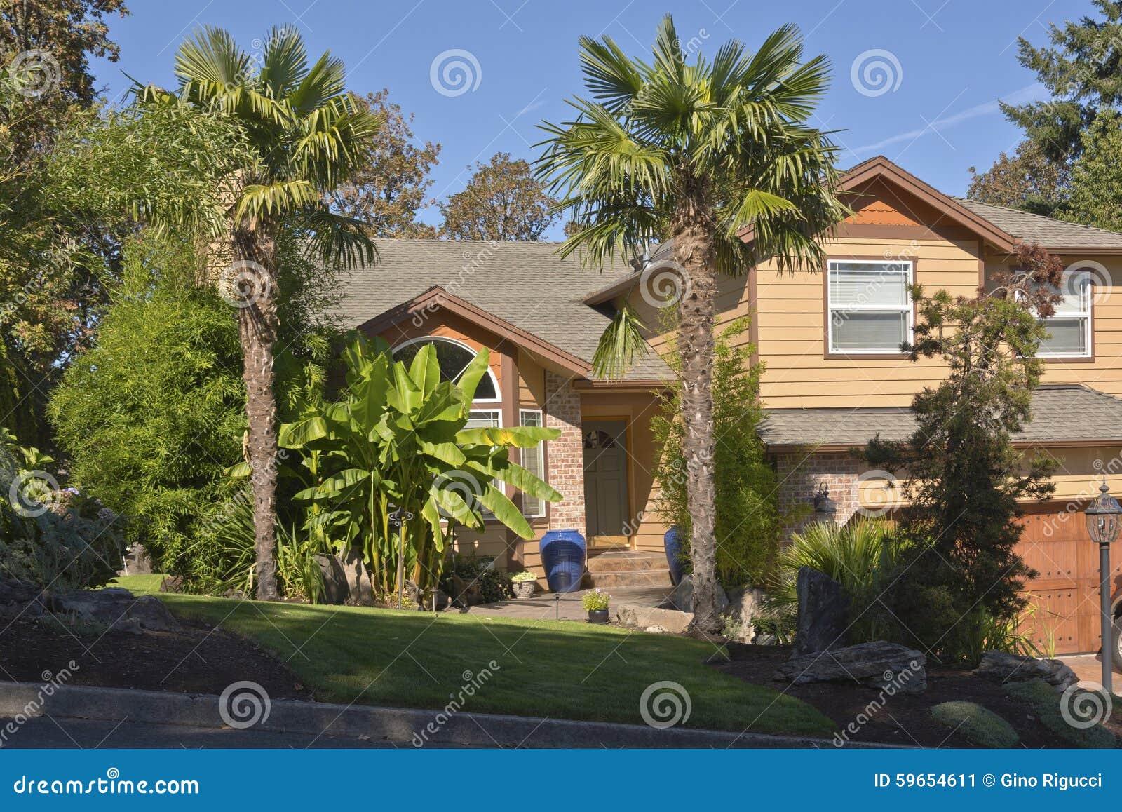 maison tropicale avec les palmiers et le bananier image stock image du vivre nature 59654611. Black Bedroom Furniture Sets. Home Design Ideas