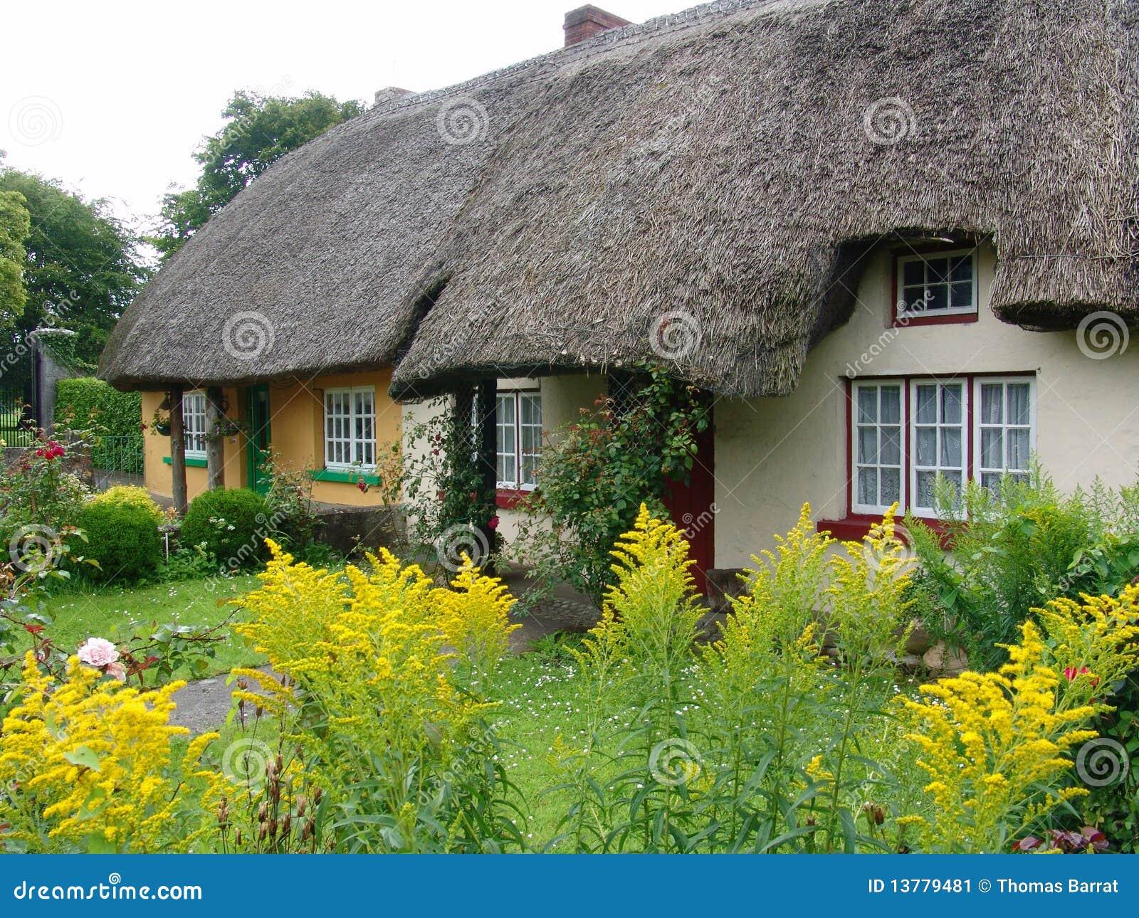Maison type de toit couvert de chaume en irlande image for Type de toiture maison