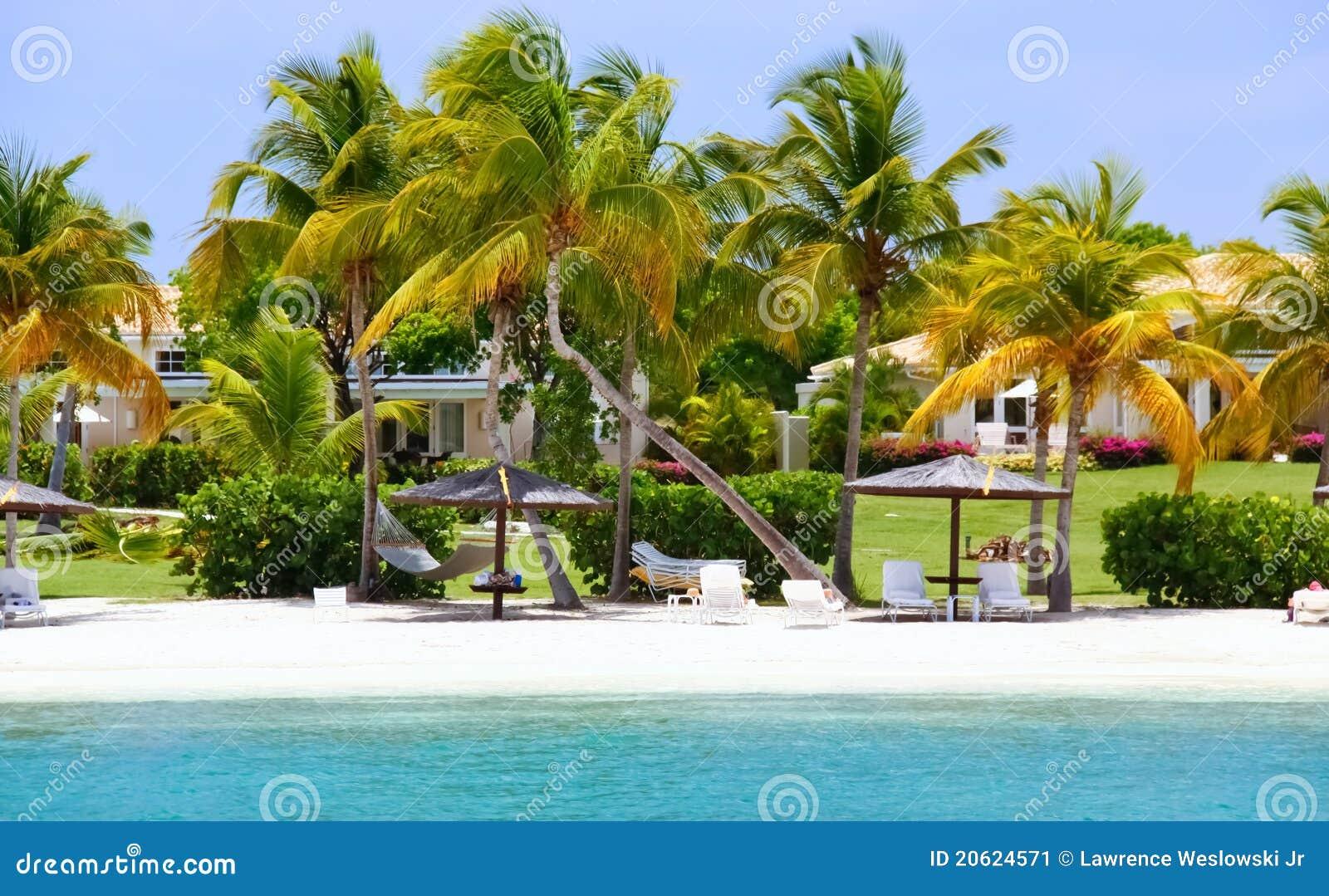 Maisons exclusives de bord de mer avec la plage sur l 39 antigua image stock - Maison bord de plage ...