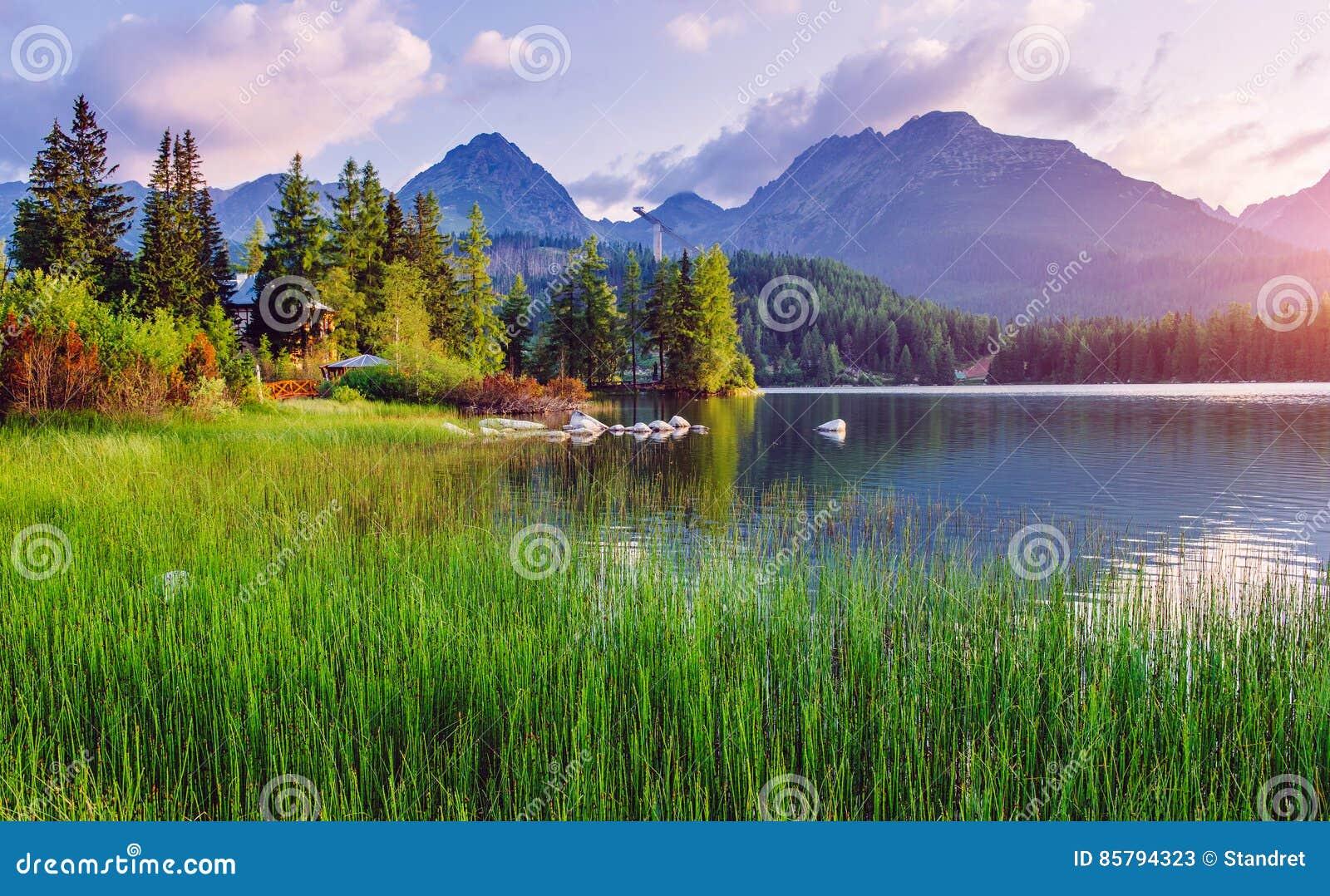 Majestätisk bergsjö i nationalparken höga Tatra Strbske Pleso Slovakien, Europa