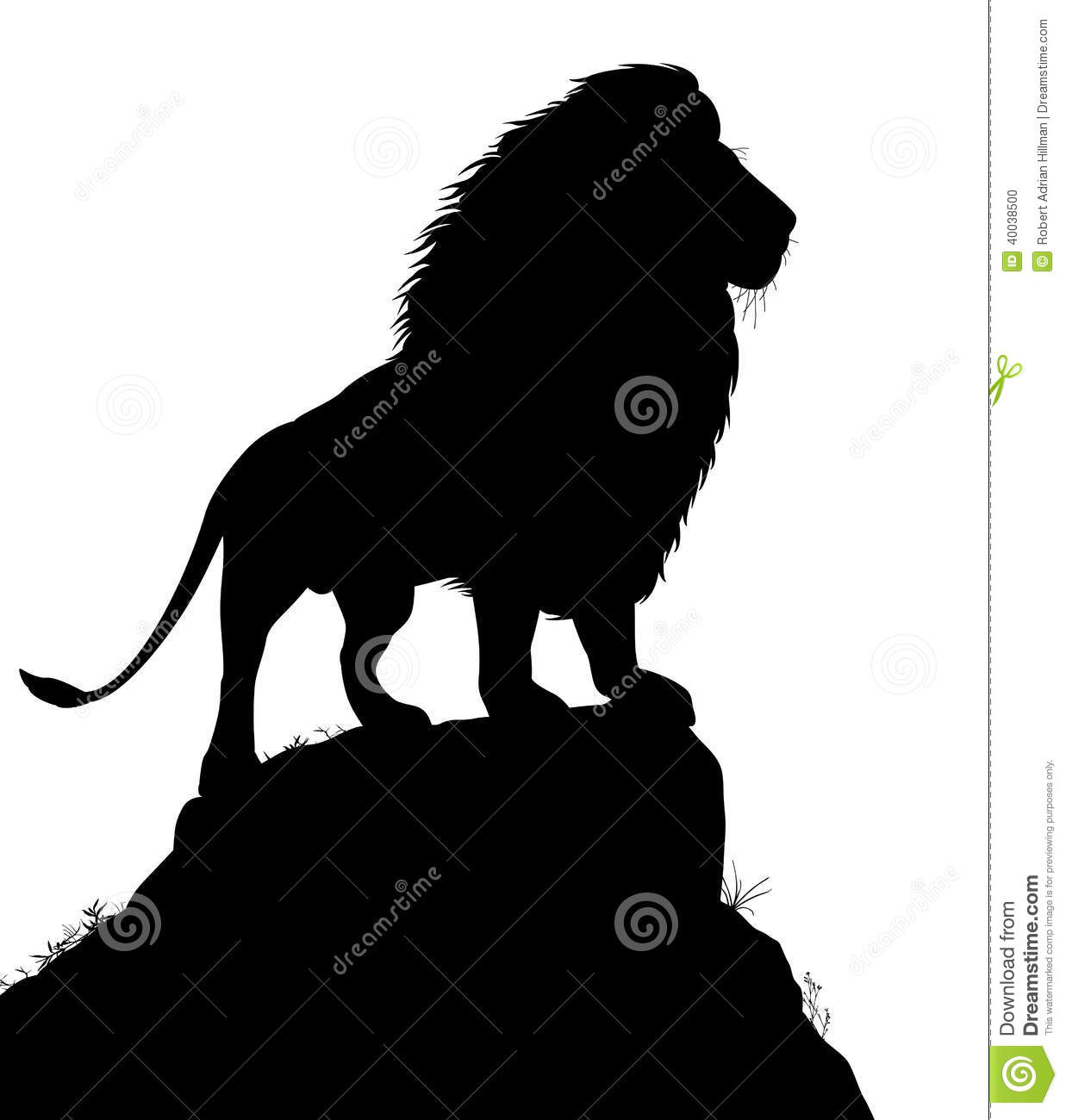 Majestic Lion Stock Vector Image Of Mammal Watching