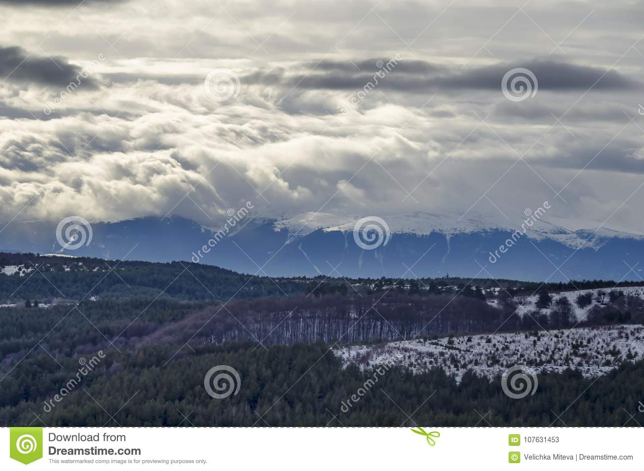 Majestic view of cloudy sky, winter mountain, snowy glade, conifer and deciduous forest from Plana mountain toward Rila mountain