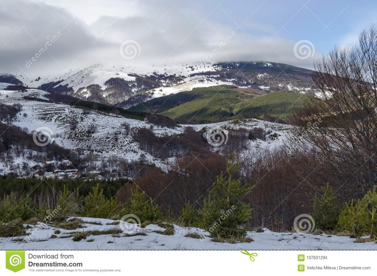 Majestic view of cloudy sky, winter mountain, snowy glade, residential district, conifer and deciduous forest from Plana mountain