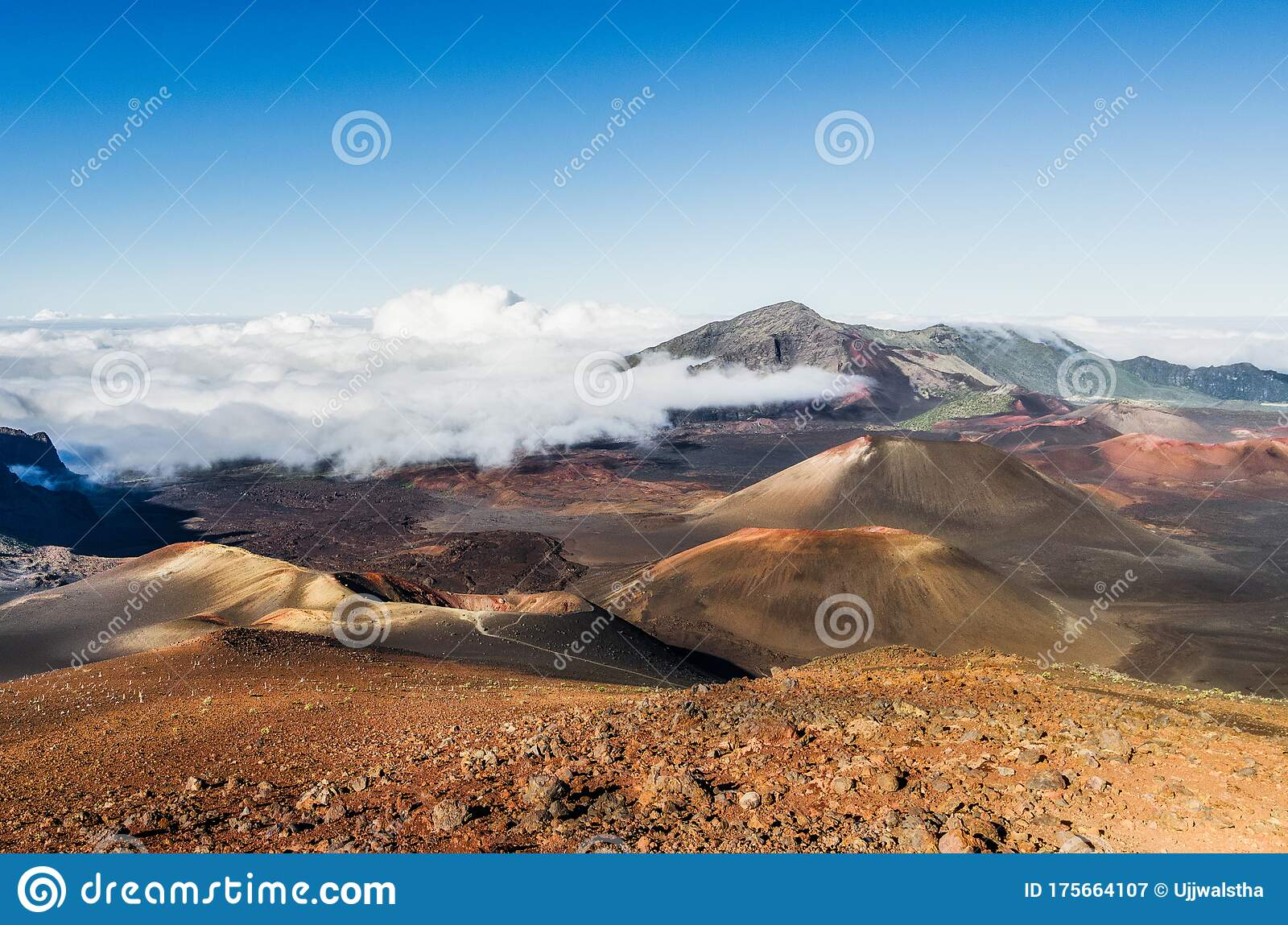 Majestic View Of Craters In Haleakala National Park In Maui Hawaii Usa Stock Image Image Of National Kauai 175664107