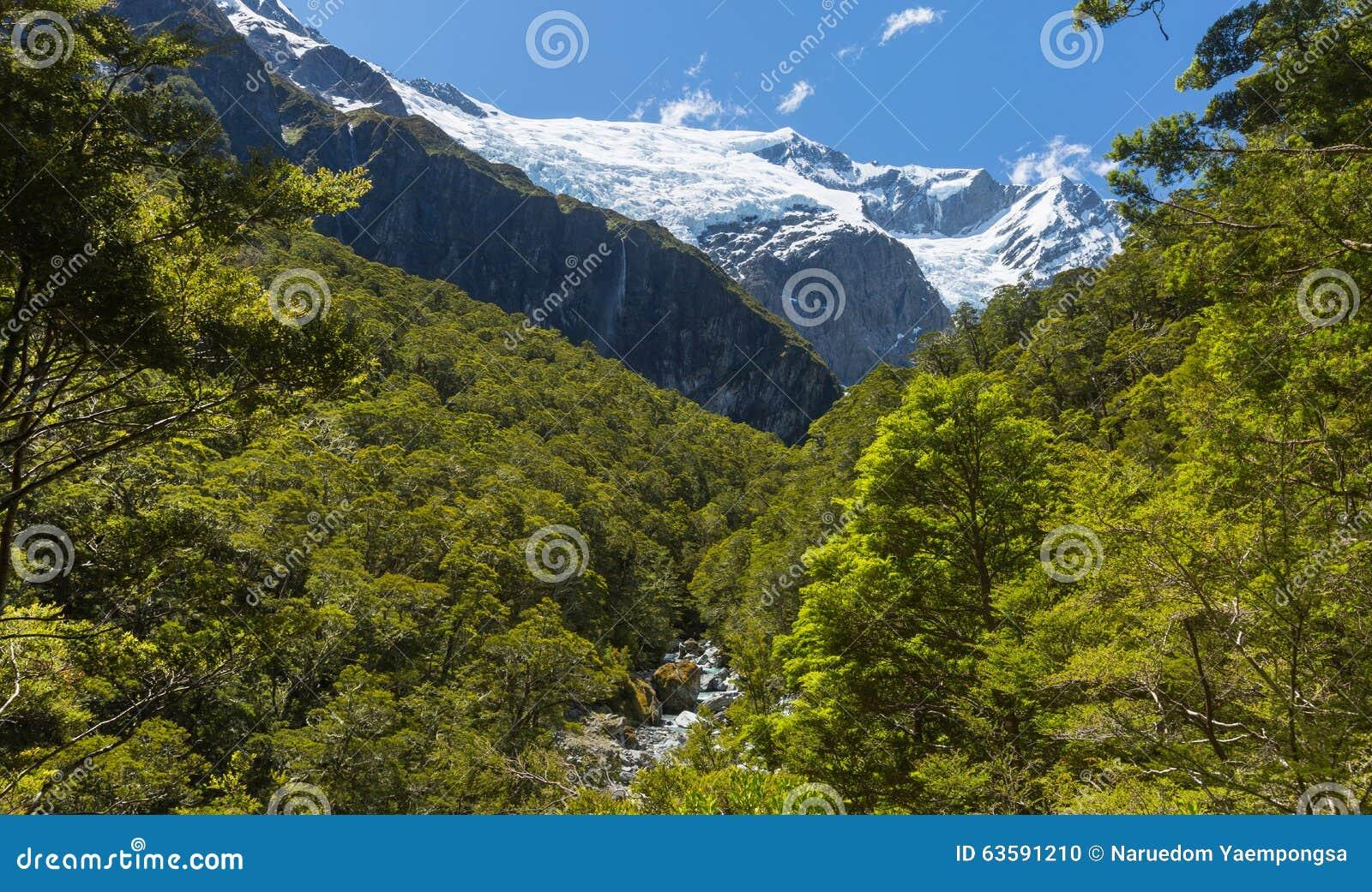 Majestic view of Rob Roy Glacier