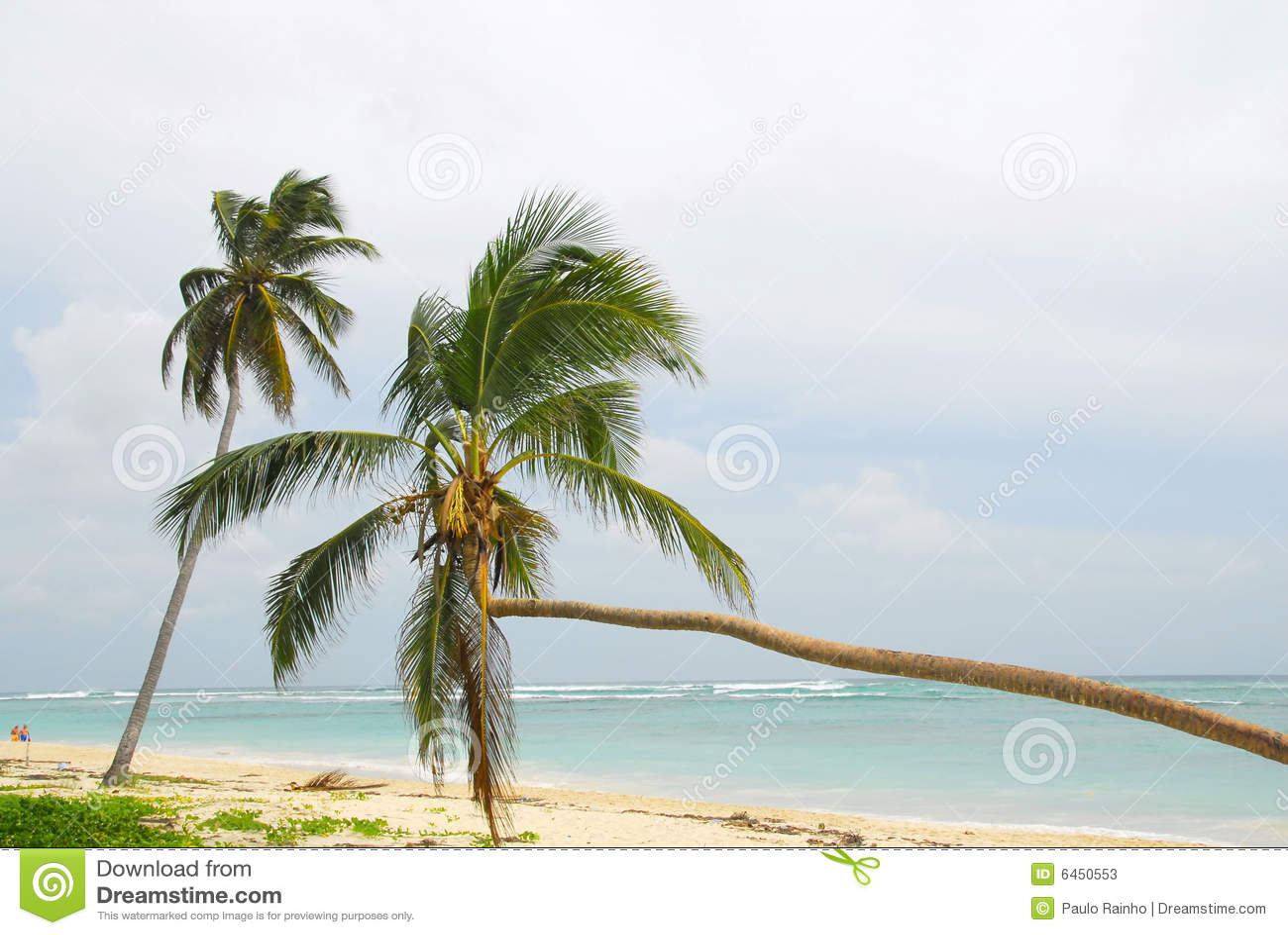 Makao dominicana plażowy r
