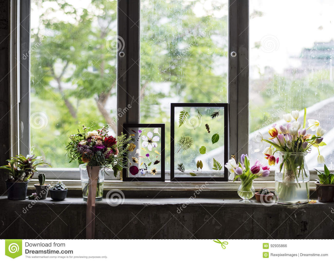 Making Dried Flowers In Glass Frame Hobby Handmade Stock Photo Image Of Beautiful Blossom 92935866