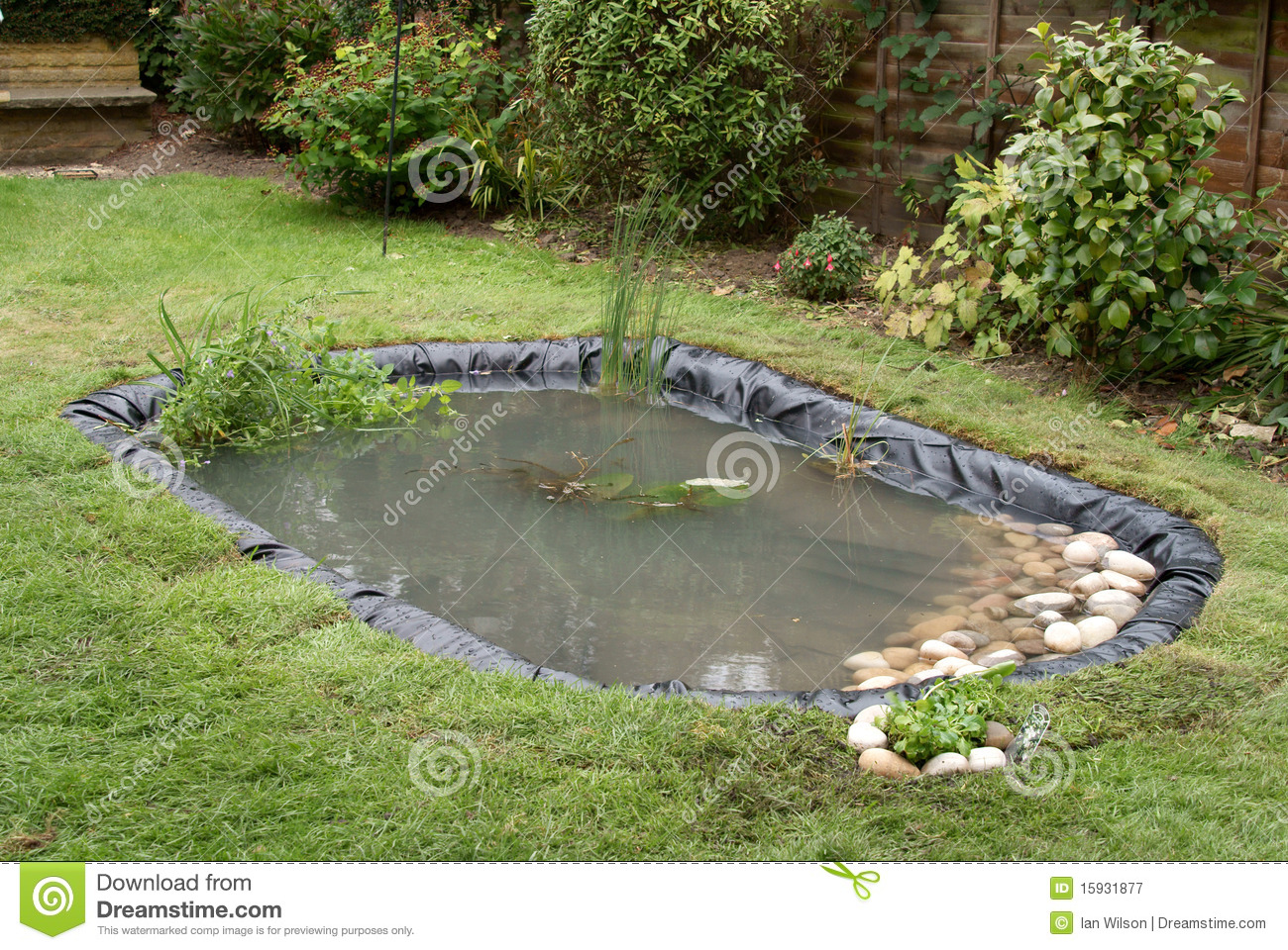 Making a garden pond stock image image of lillies rubber for Making a fish pond