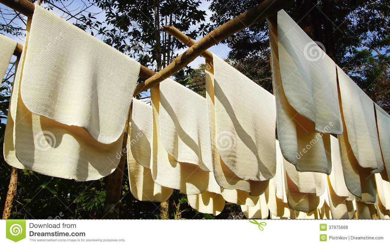 Making Rubber Sheets Process Stock Photo Image Of