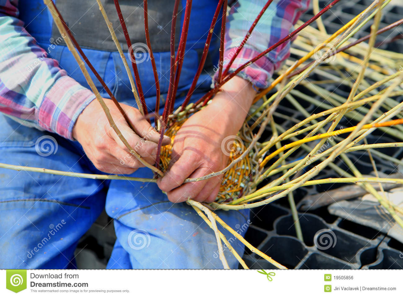 Traditional Basket Making : Making traditional easter wicker basket royalty free stock
